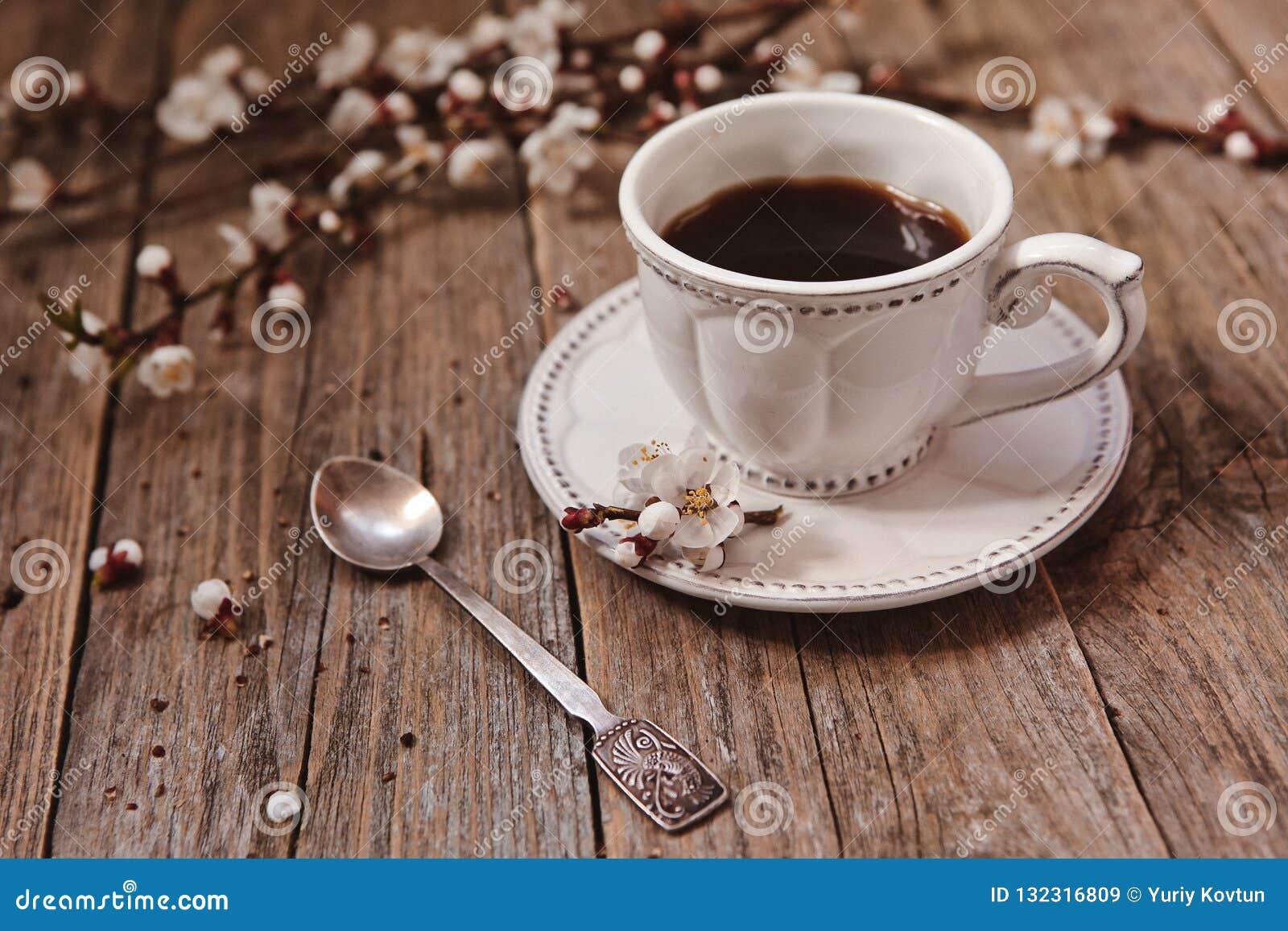 咖啡白色茶碟木杨柳分支芽