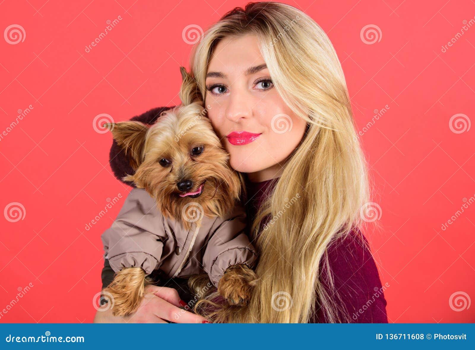 哪些狗品种应该穿外套 穿戴冷天的狗 确定狗感到舒适在衣裳 呼吁
