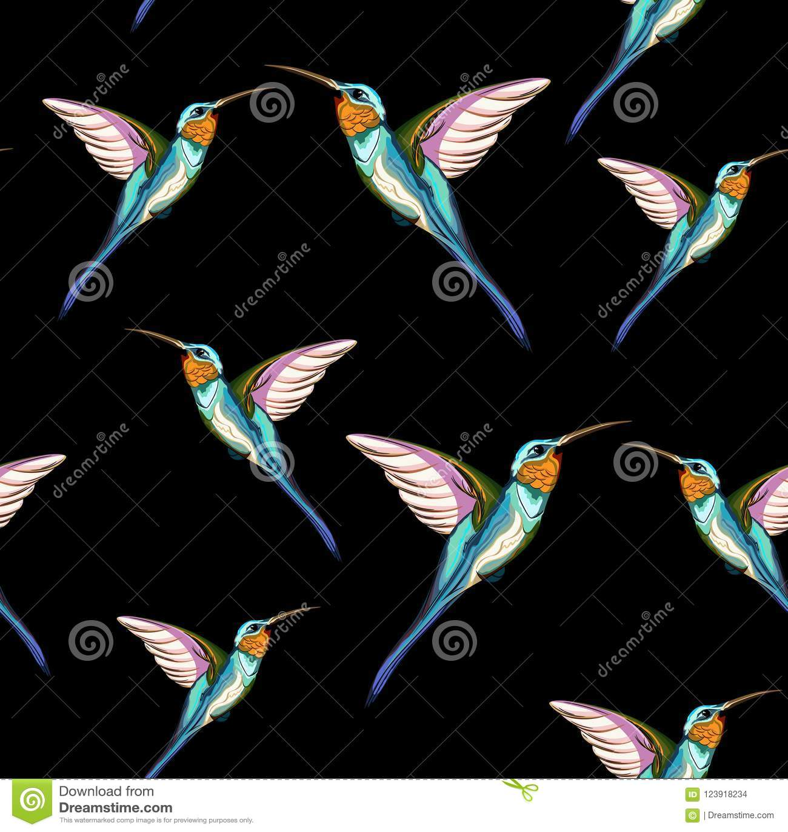 哼唱着鸟 异乎寻常的热带哼唱着鸟的无缝的样式 象查找的画笔活性炭被画的现有量例证以图例解释者做柔和的淡色彩对传统
