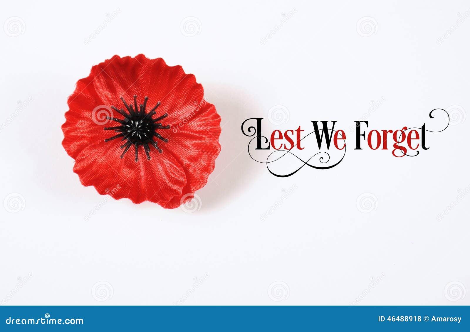唯恐我们忘记,在白色的红色富兰德鸦片翻领Pin徽章