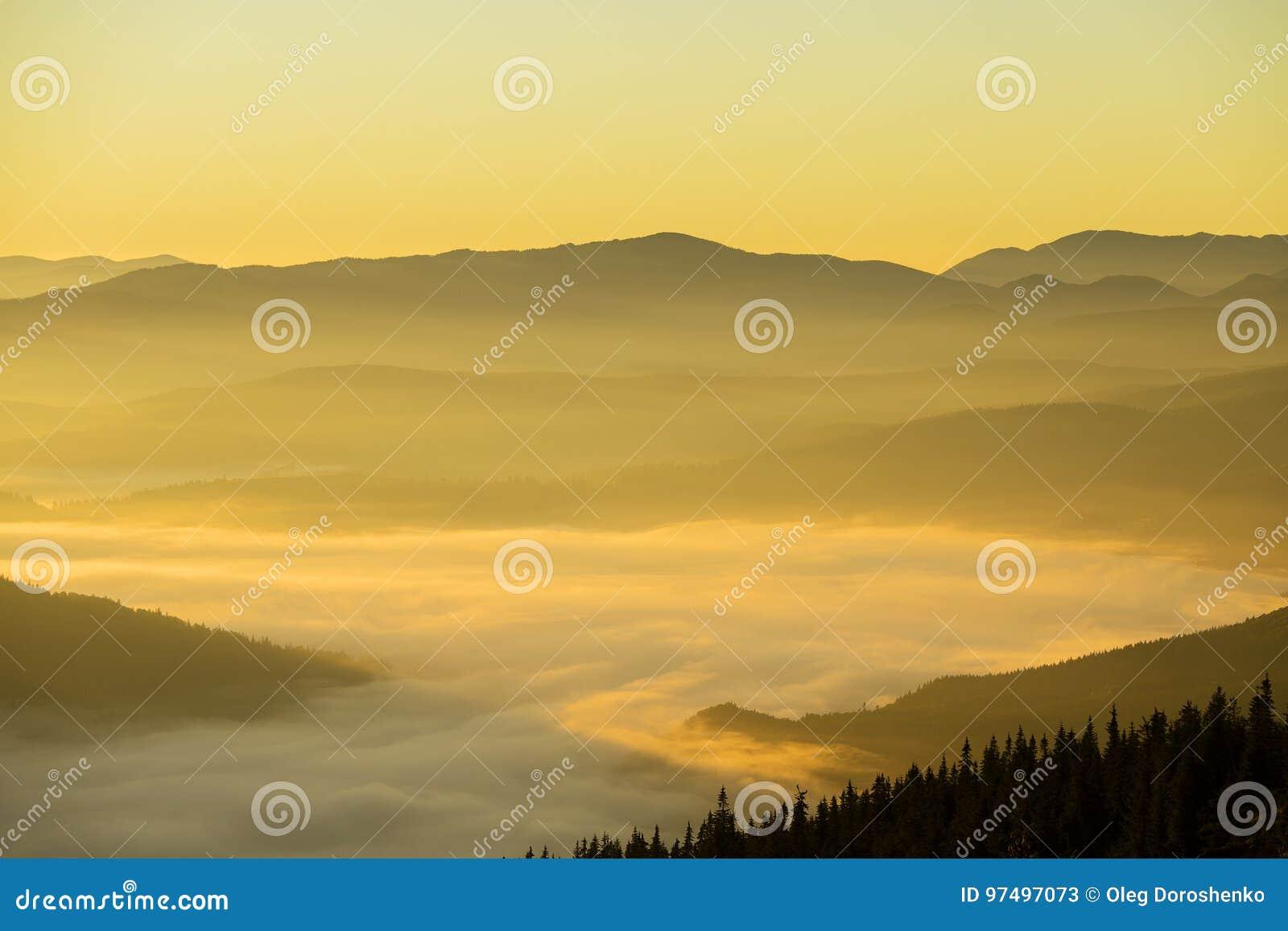 喀尔巴阡山脉的日出在夏天 乌克兰
