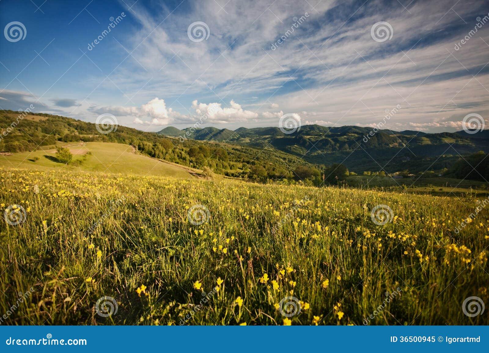 喀尔巴阡山脉