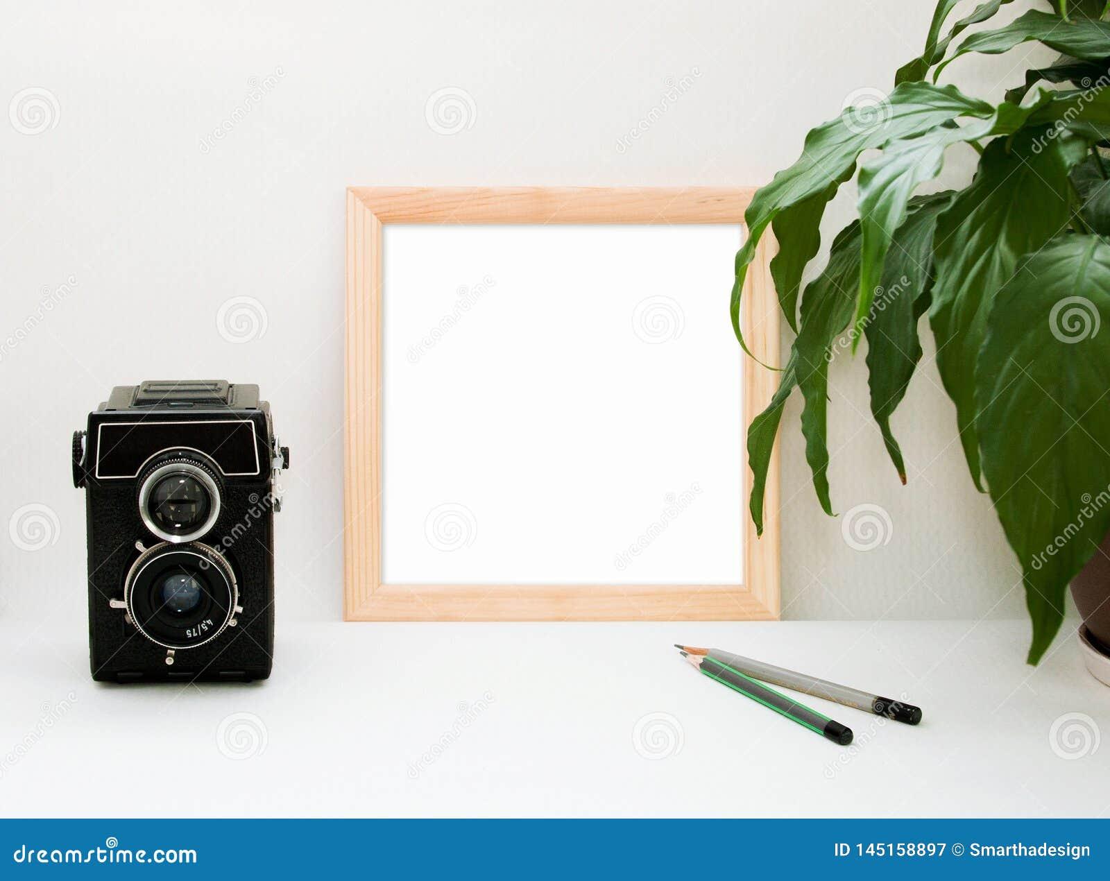 嘲笑木制框架、老照相机、植物和铅笔 与木框架的内部家庭方形的海报大模型和在白色的绿色叶