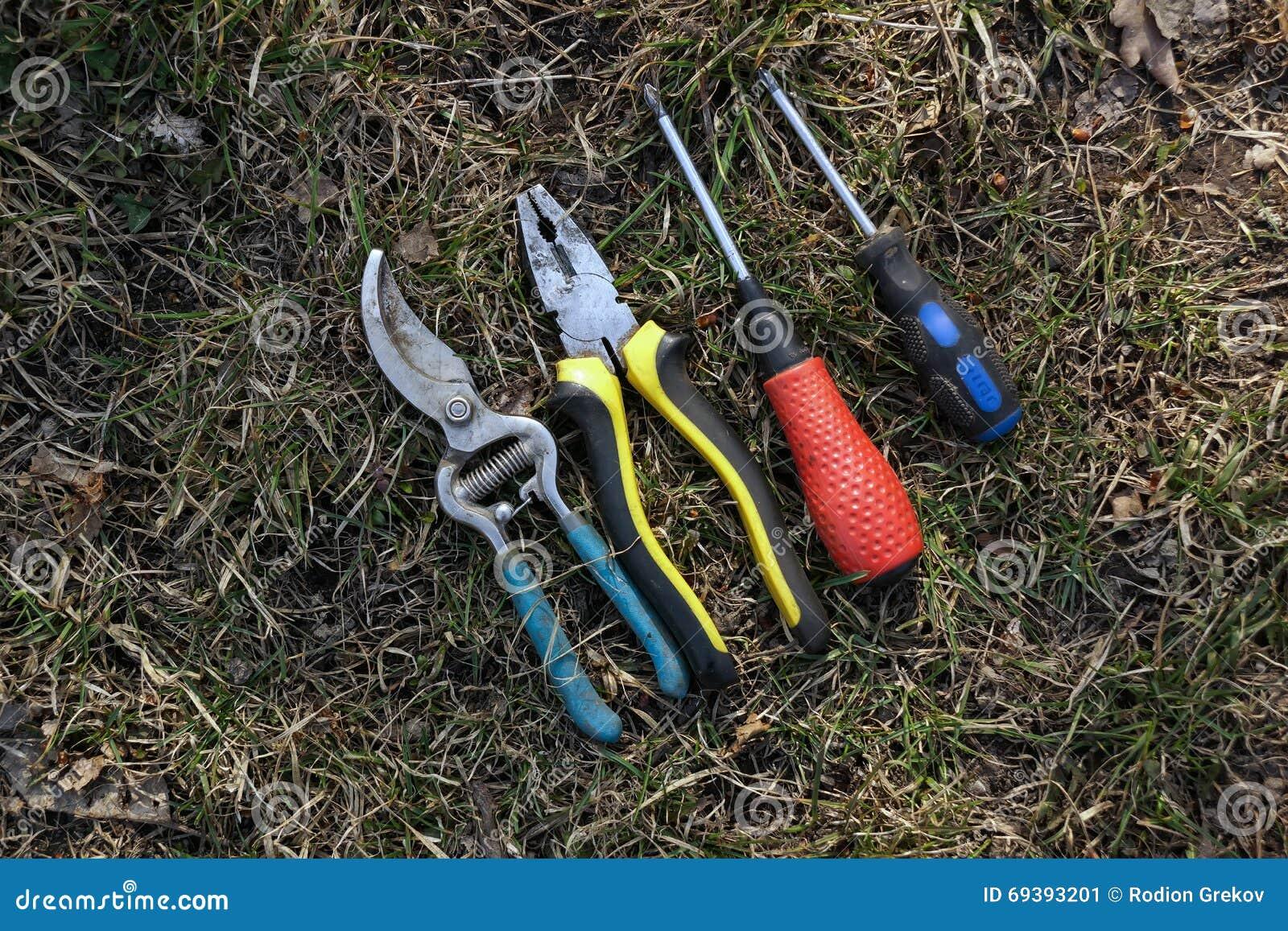 仪器 螺丝刀,钳子
