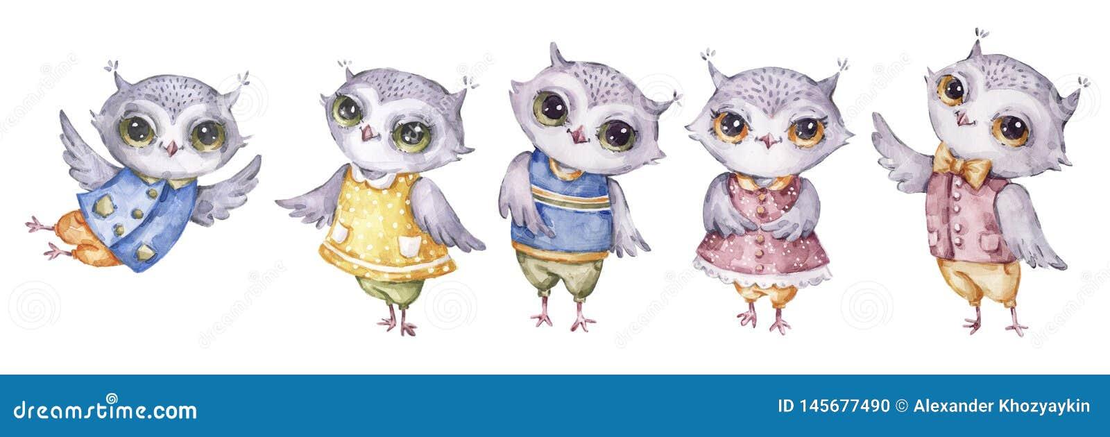 四头逗人喜爱的水彩画猫头鹰,在幼稚样式的集合