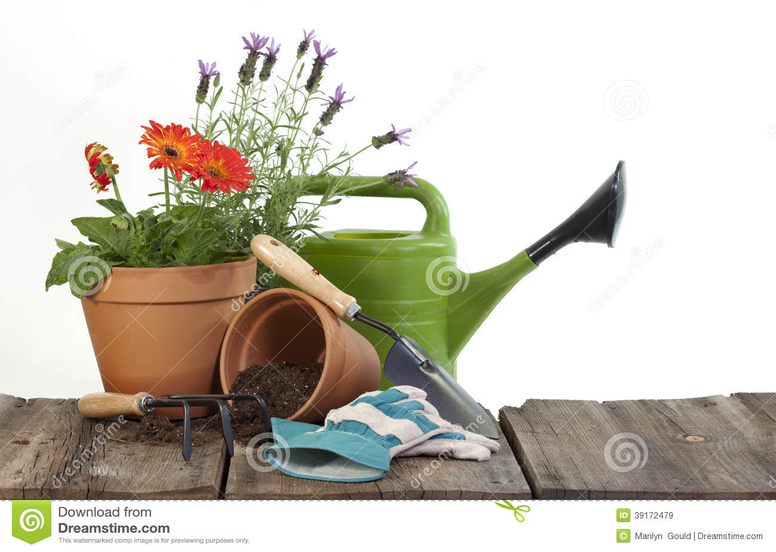 园艺工具和花