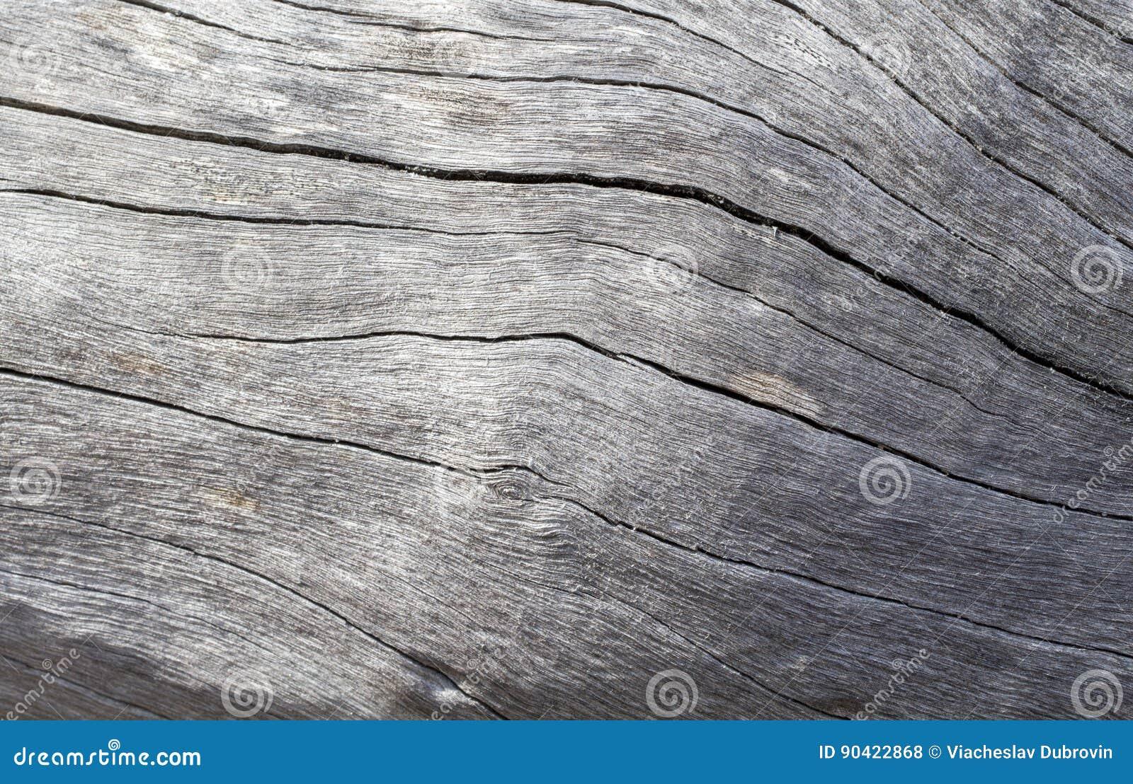 困厄的木纹理特写镜头照片 冷的灰色木背景
