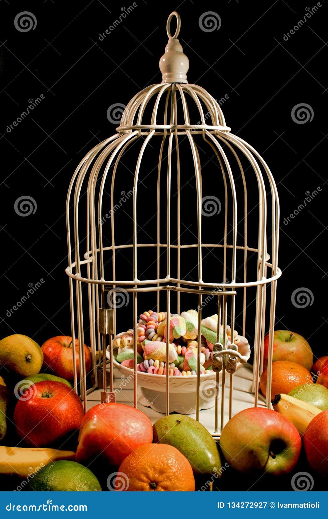 围拢与甜点的果子一只笼子附上