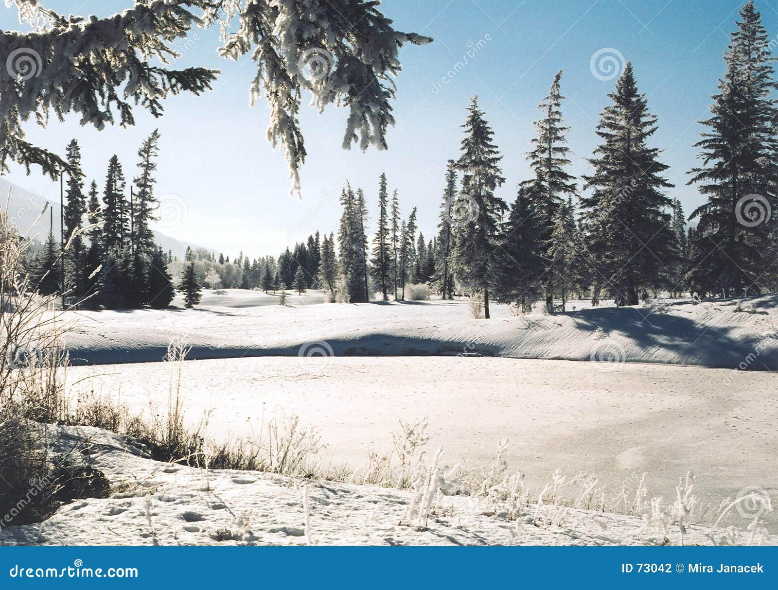 国家(地区)冬天