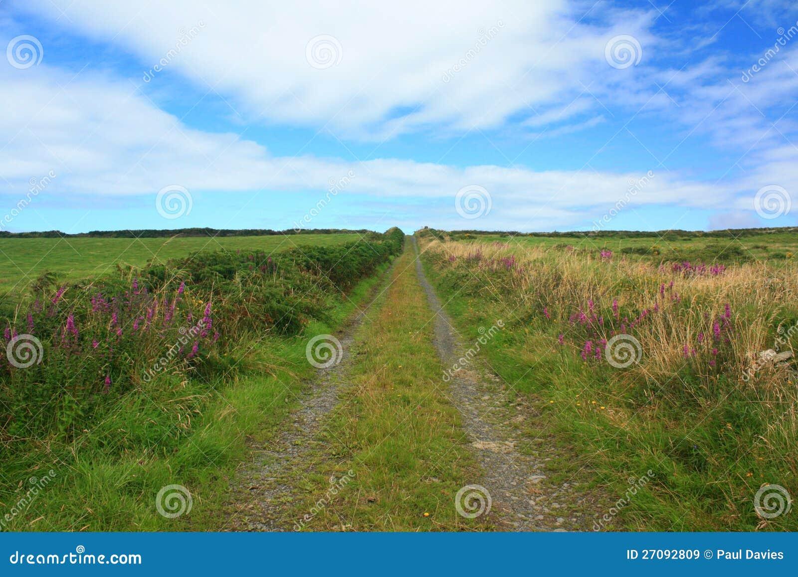 国家(地区)运输路线,爱尔兰