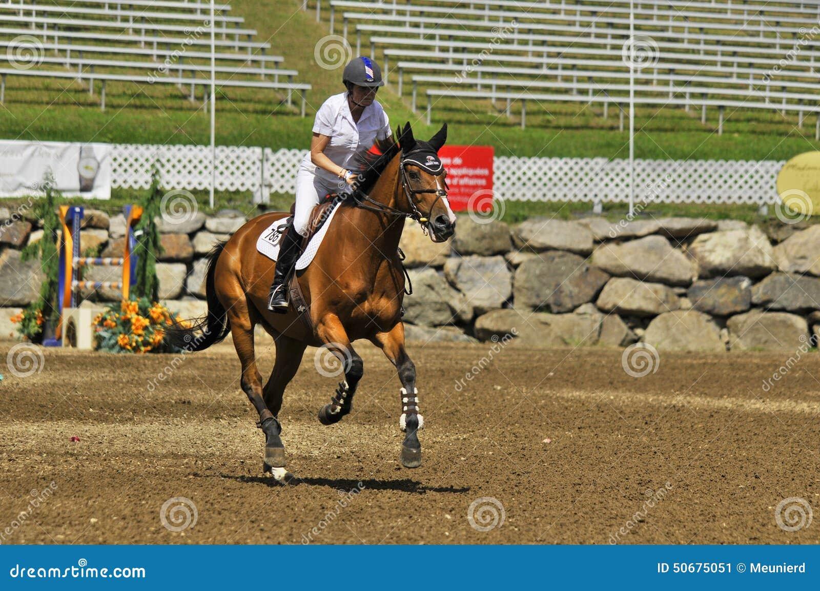 Download 国际BROMONT 编辑类照片. 图片 包括有 飞跃, 障碍, 农场, 空中, 范围, 结算, 7月, 跳接器 - 50675051