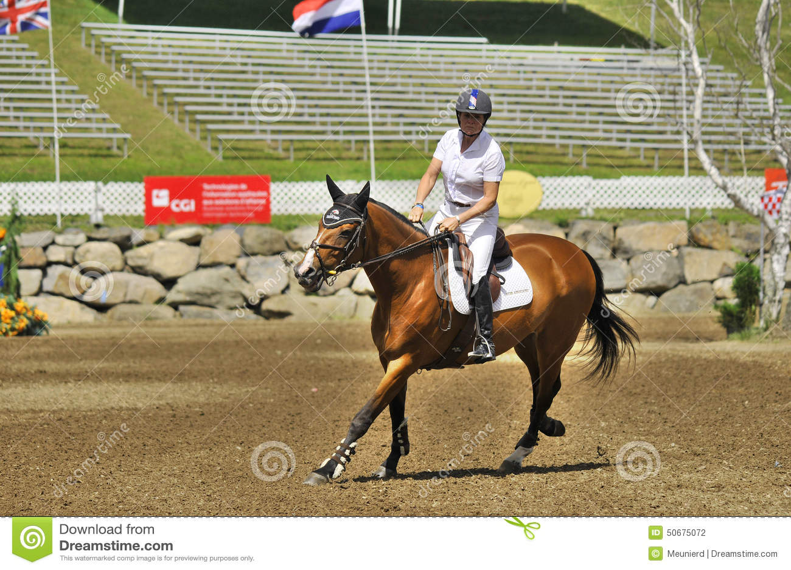 Download 国际BROMONT 图库摄影片. 图片 包括有 御马者, 云彩, 范围, 蒙特利尔, 骑马, 农场, 概念 - 50675072