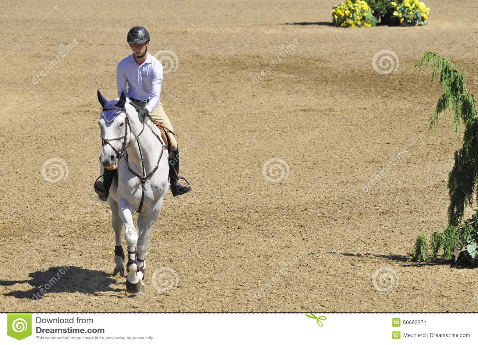 Download 国际BROMONT 编辑类照片. 图片 包括有 范围, 空中, 骑马, 加拿大, 疾驰, 上涨, 飞跃, browne - 50682371