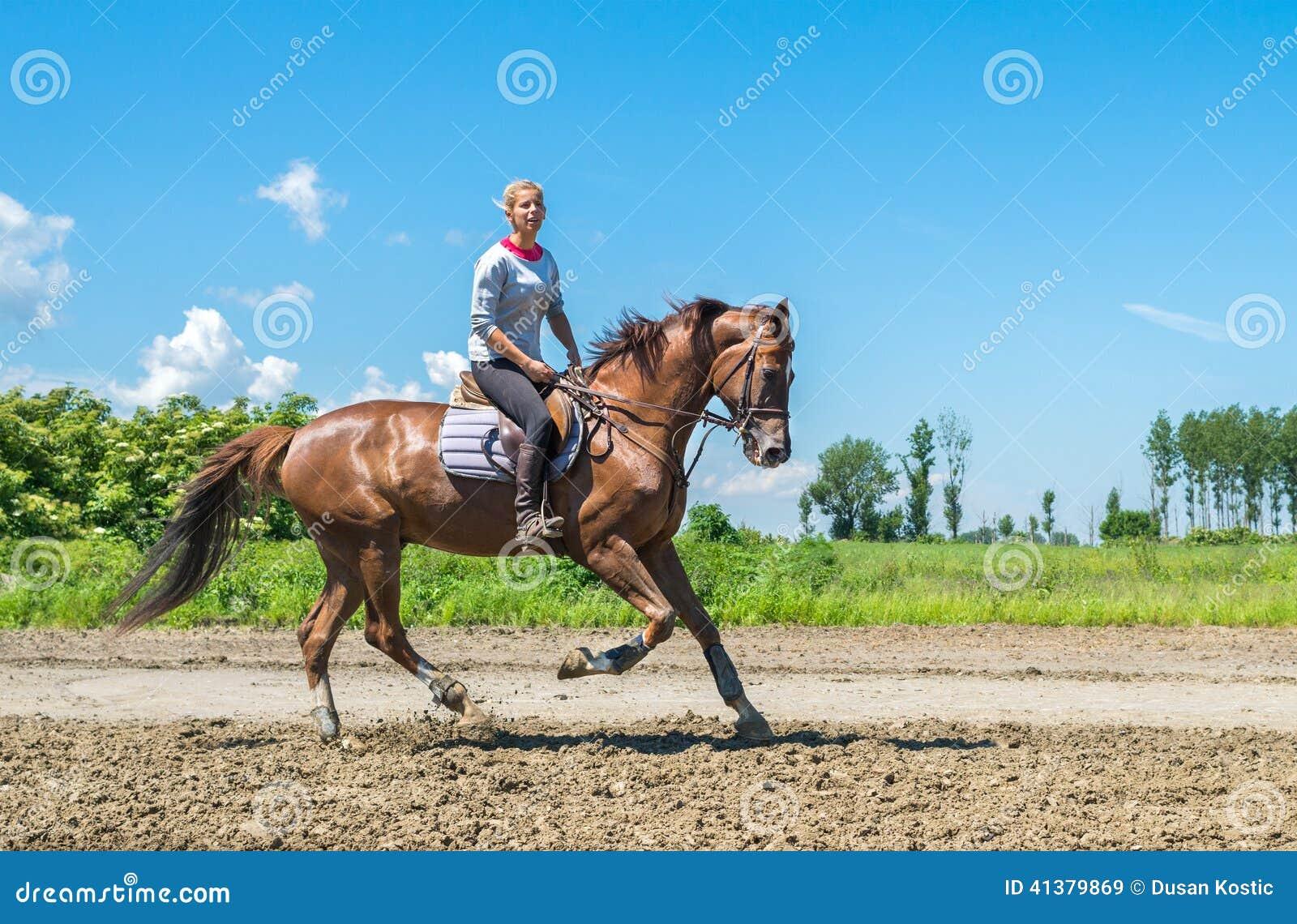 配马女_图画女孩马骑术系列导航西方通配