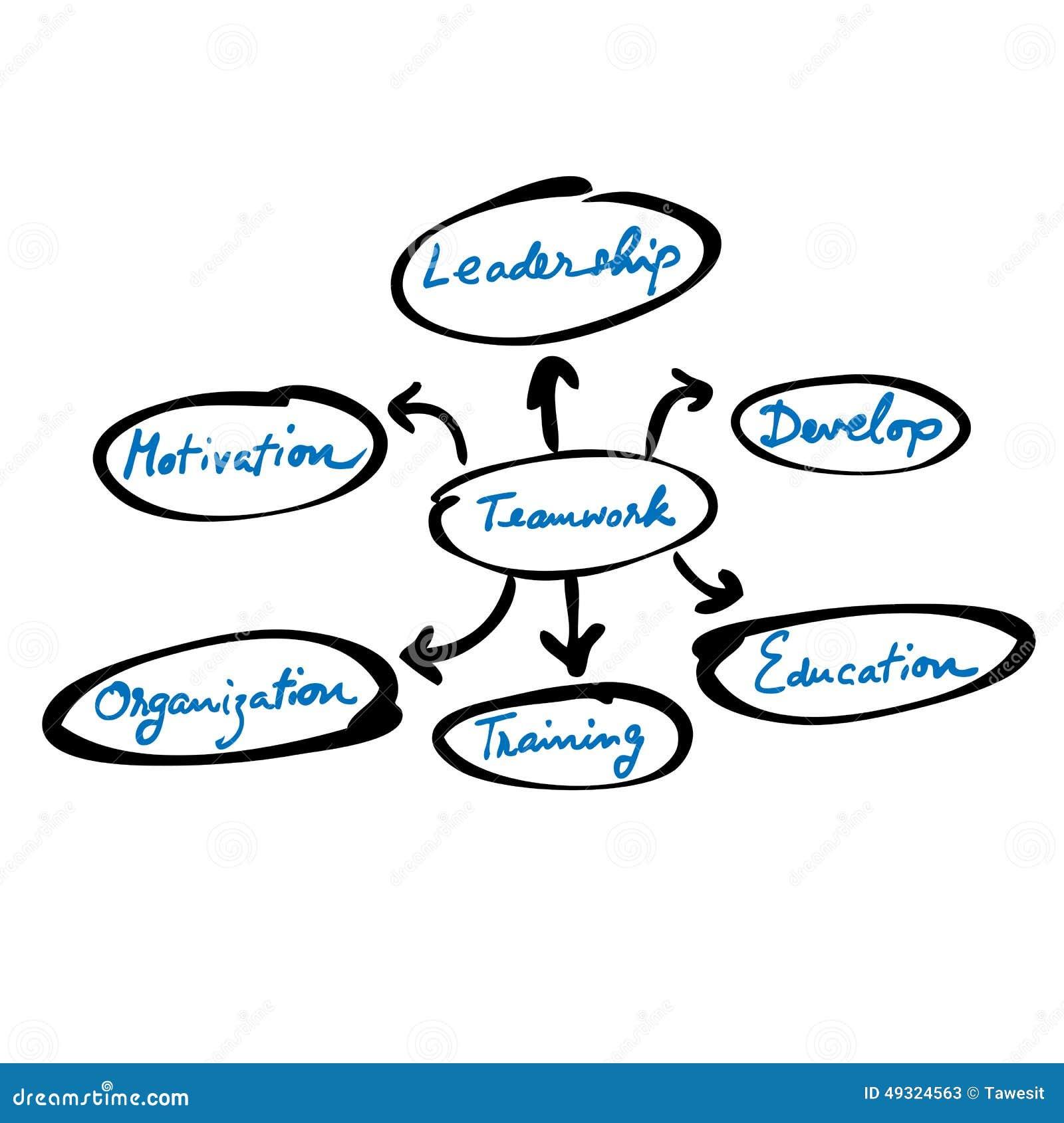 组织系统图配合