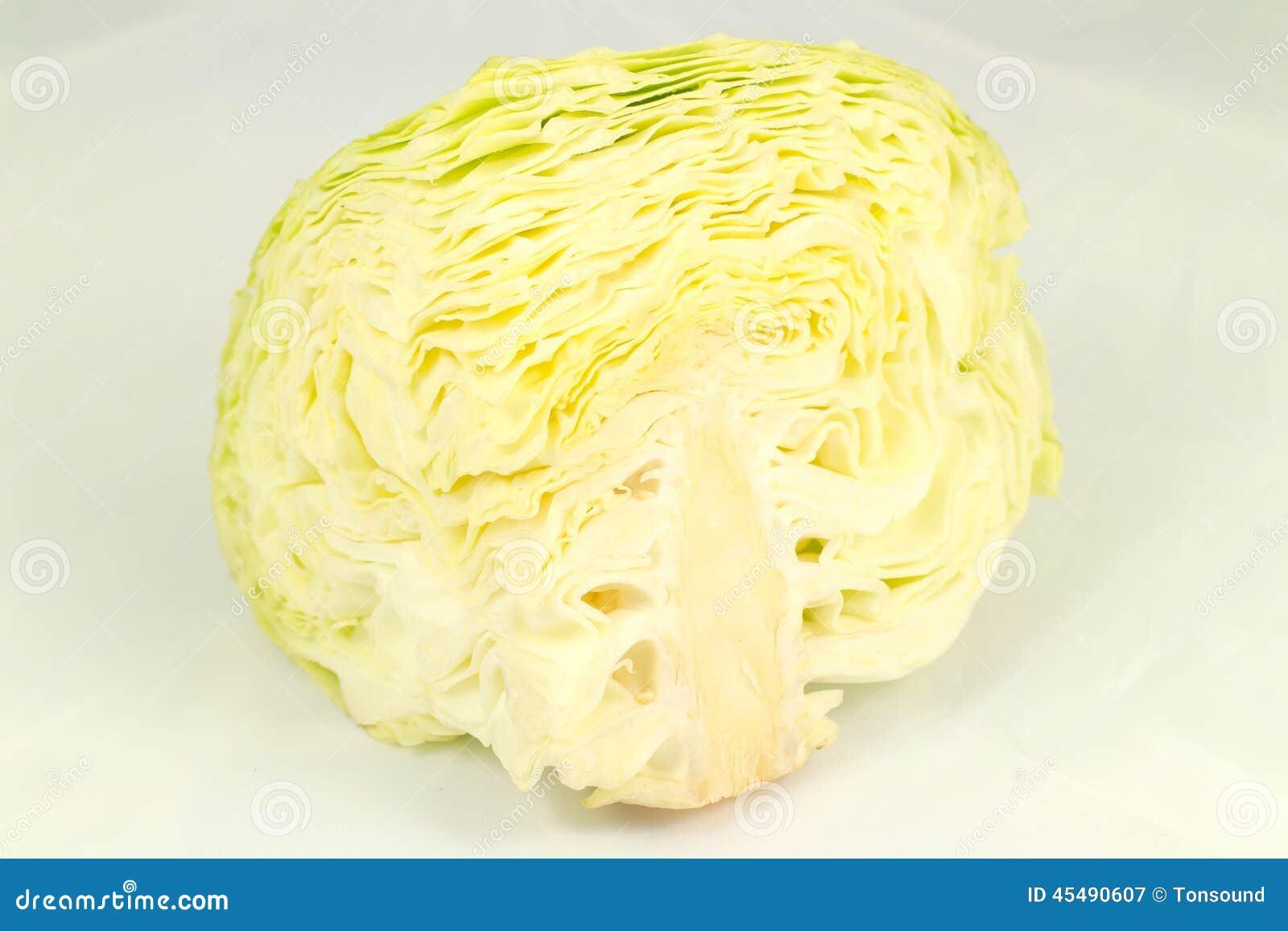 圆白菜外形