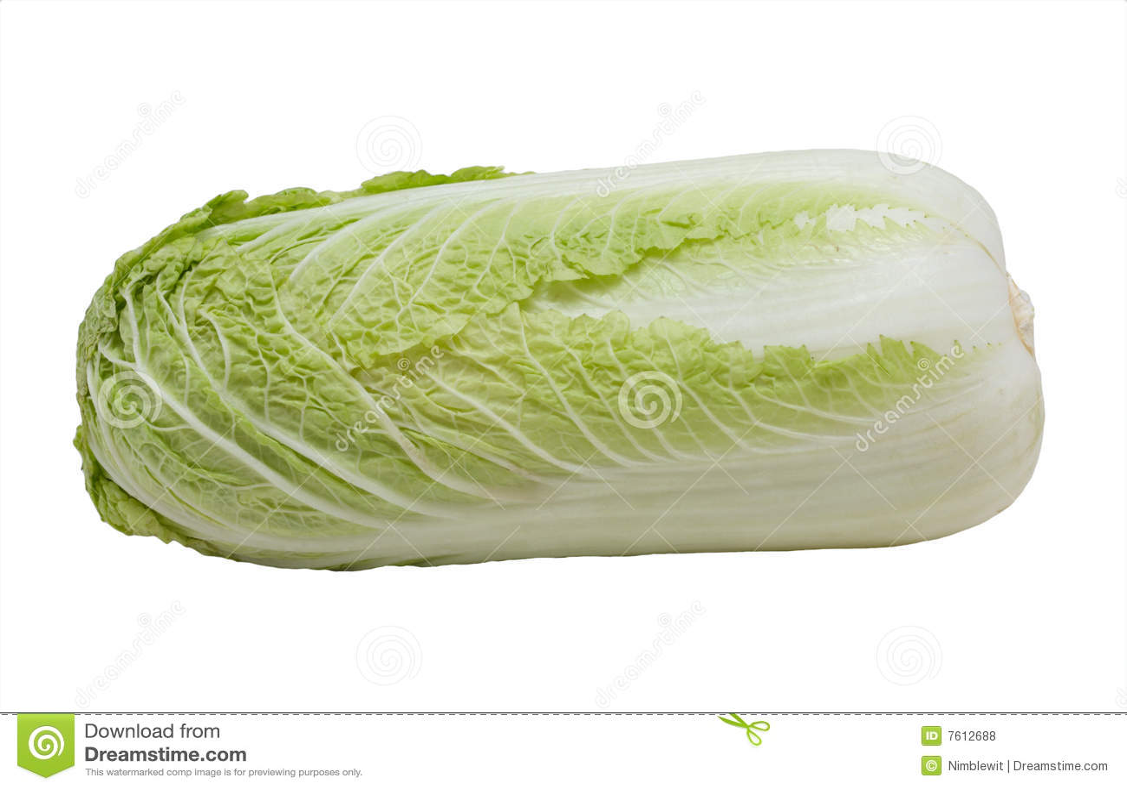 圆白菜查出napa白色