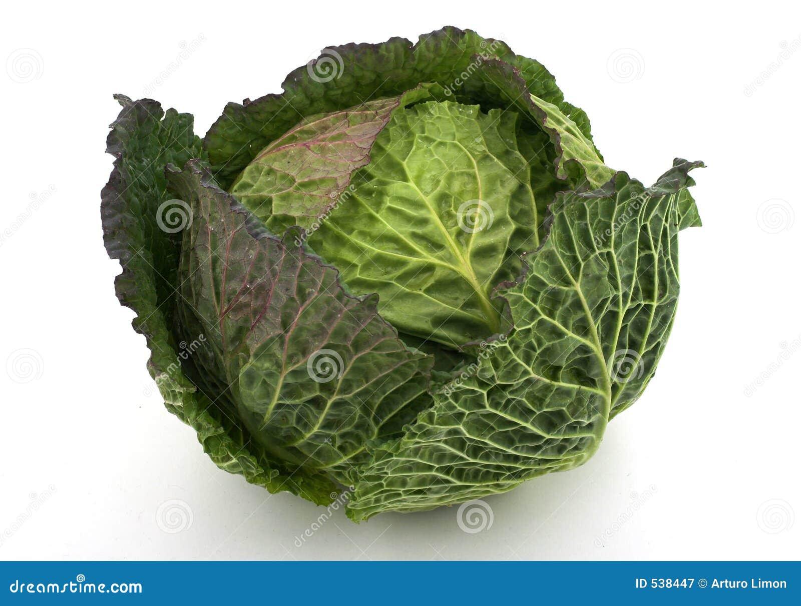 Download 圆白菜 库存图片. 图片 包括有 亭亭玉立, 庭院, 营养, 绿色, 饮食, 肥胖病, 蔬菜, 健康, 素食主义者 - 538447