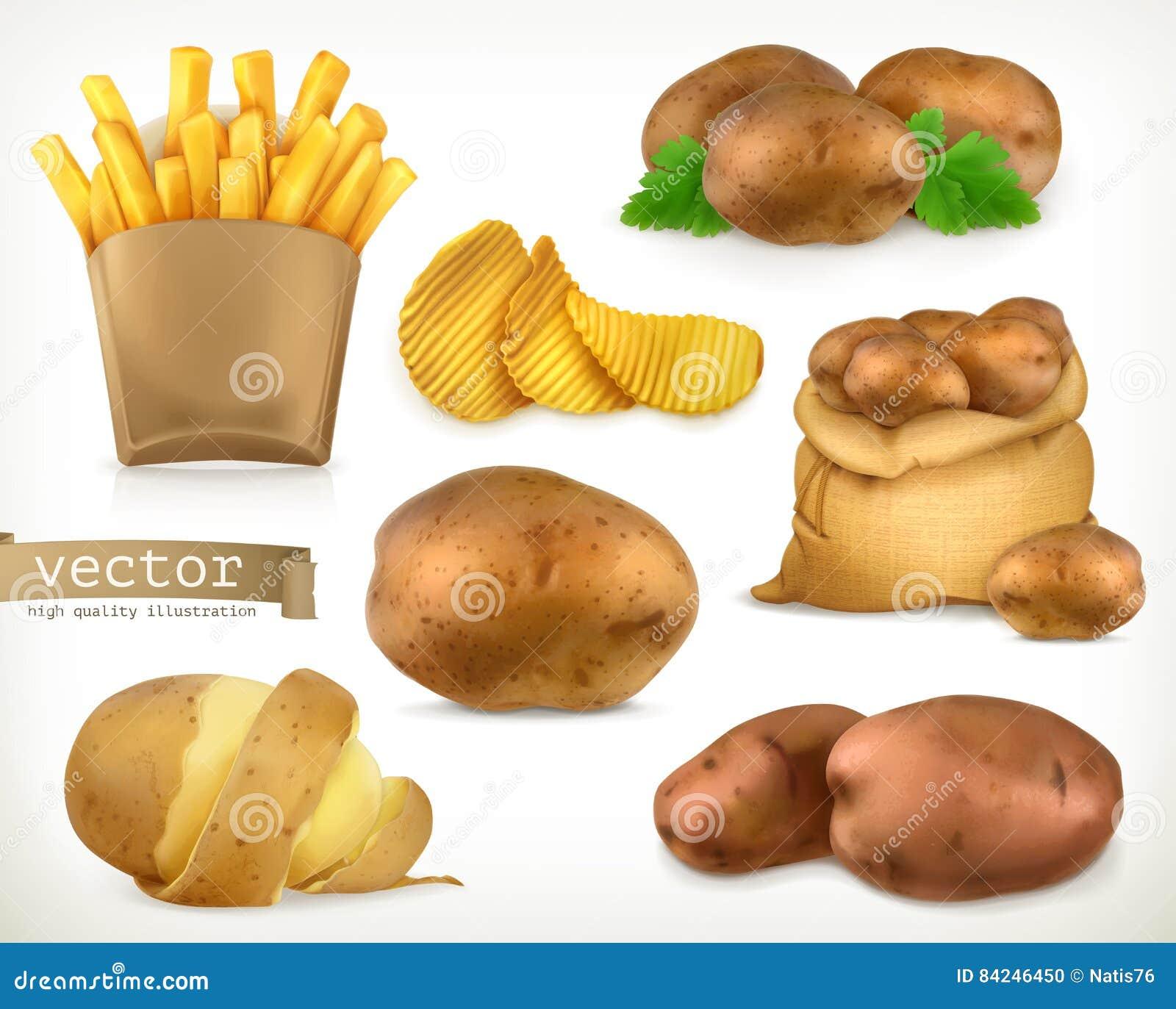土豆和油炸物芯片 菜传染媒介象集合