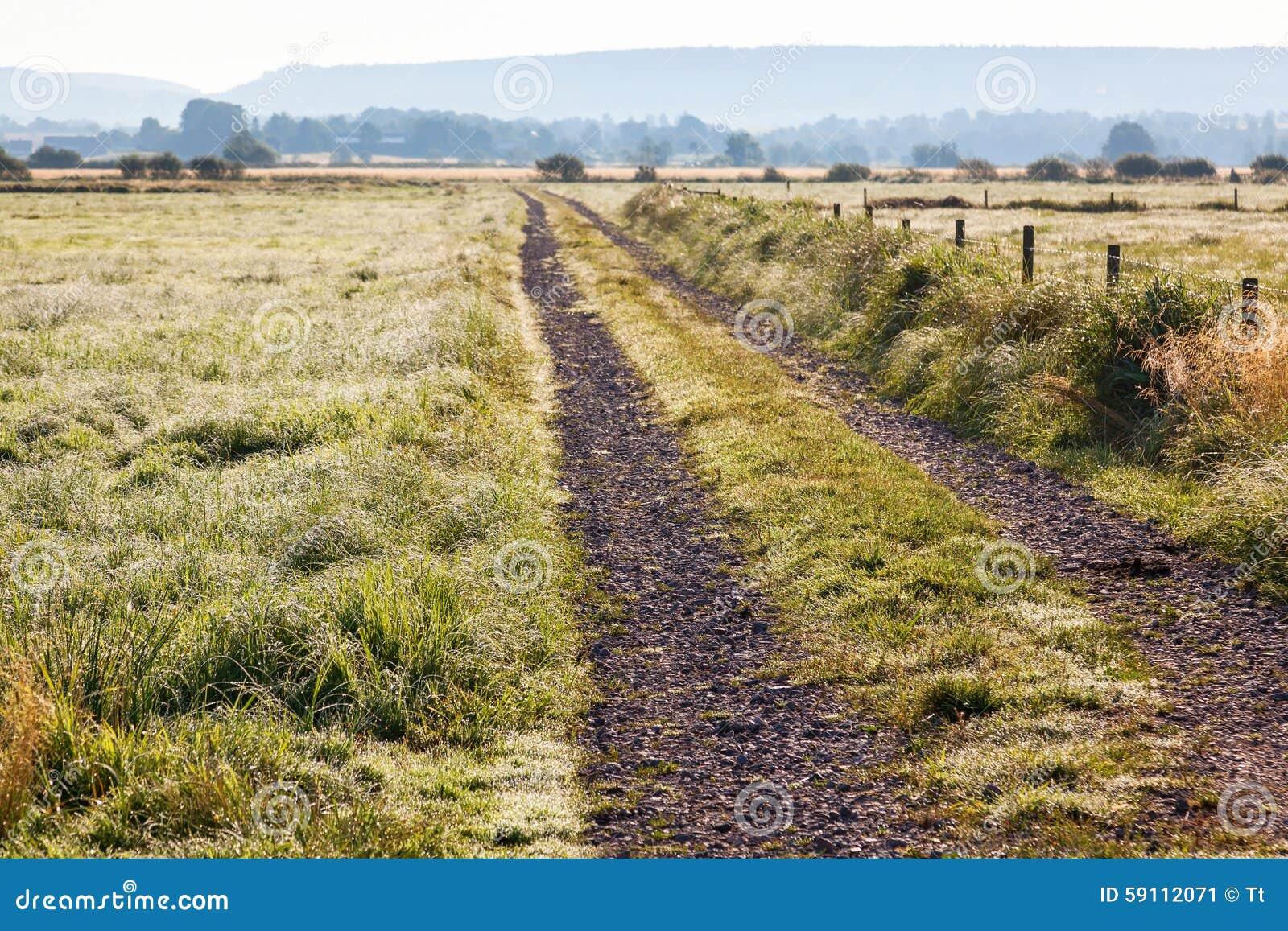 土路在有露水的一个草甸