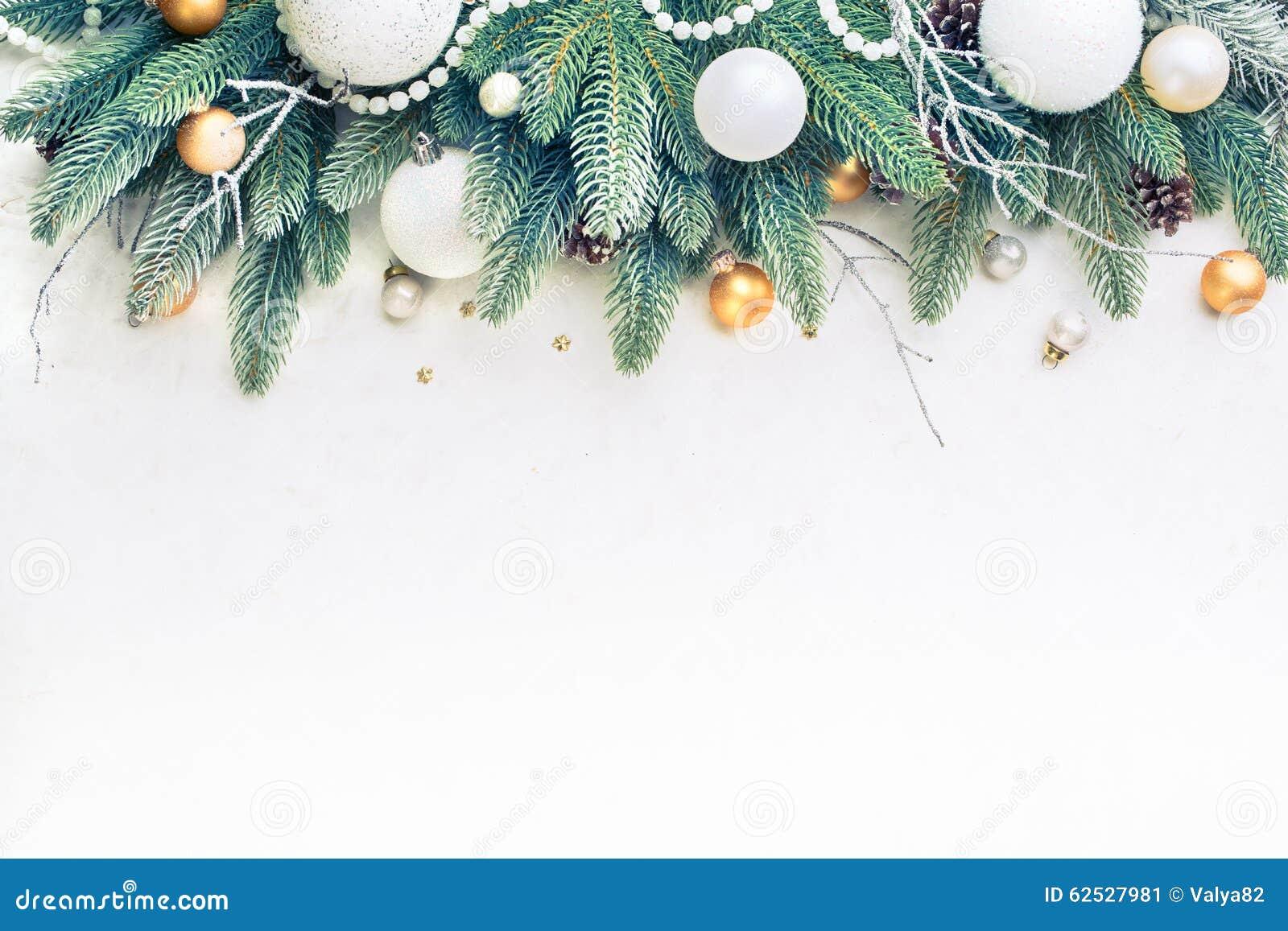 圣诞树杉木分支
