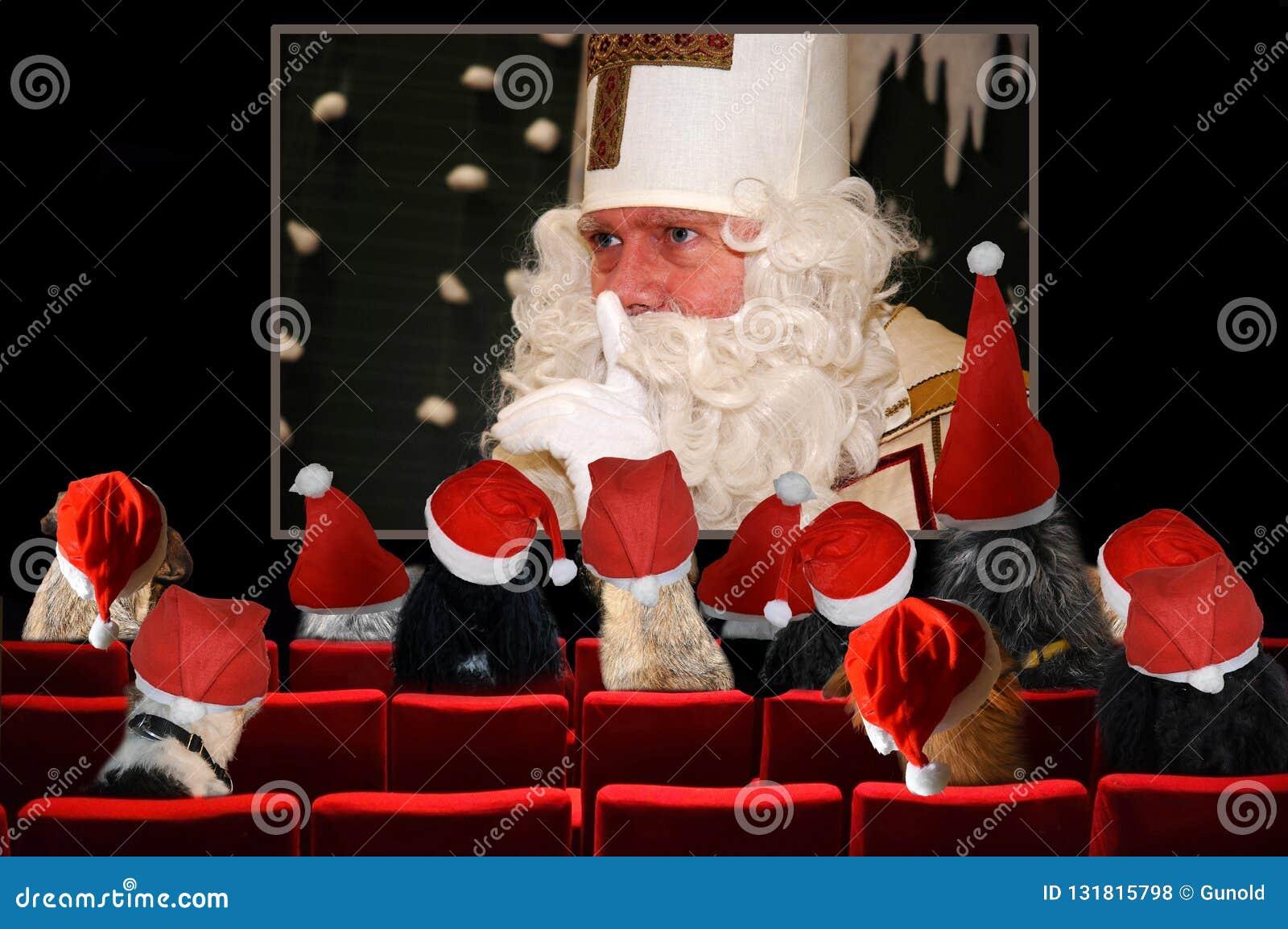 圣诞派对,看在戏院的狗圣诞老人项目电影