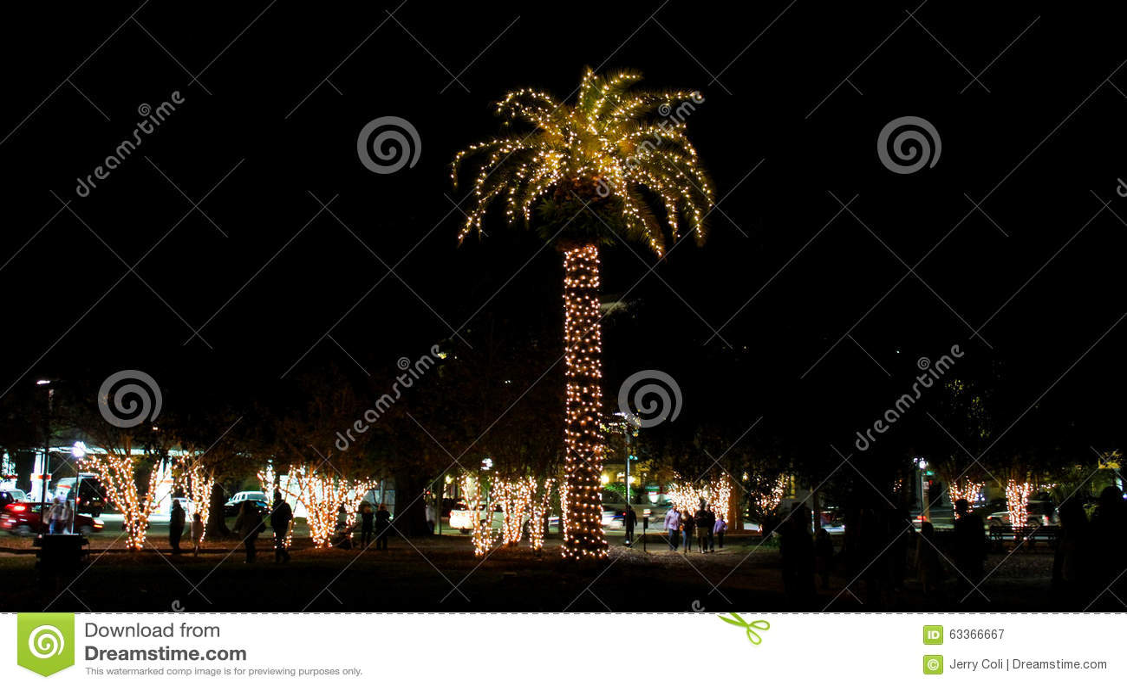 圣诞灯在查尔斯顿,南卡罗来纳装饰马里广场