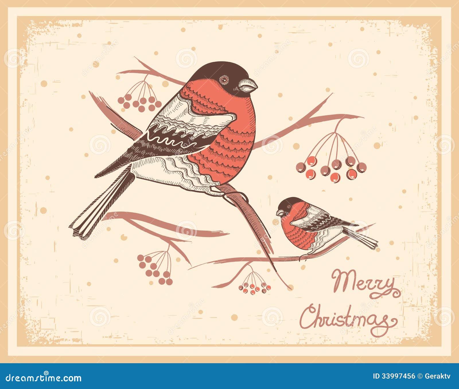 圣诞节与红腹灰雀和雪的葡萄酒卡片