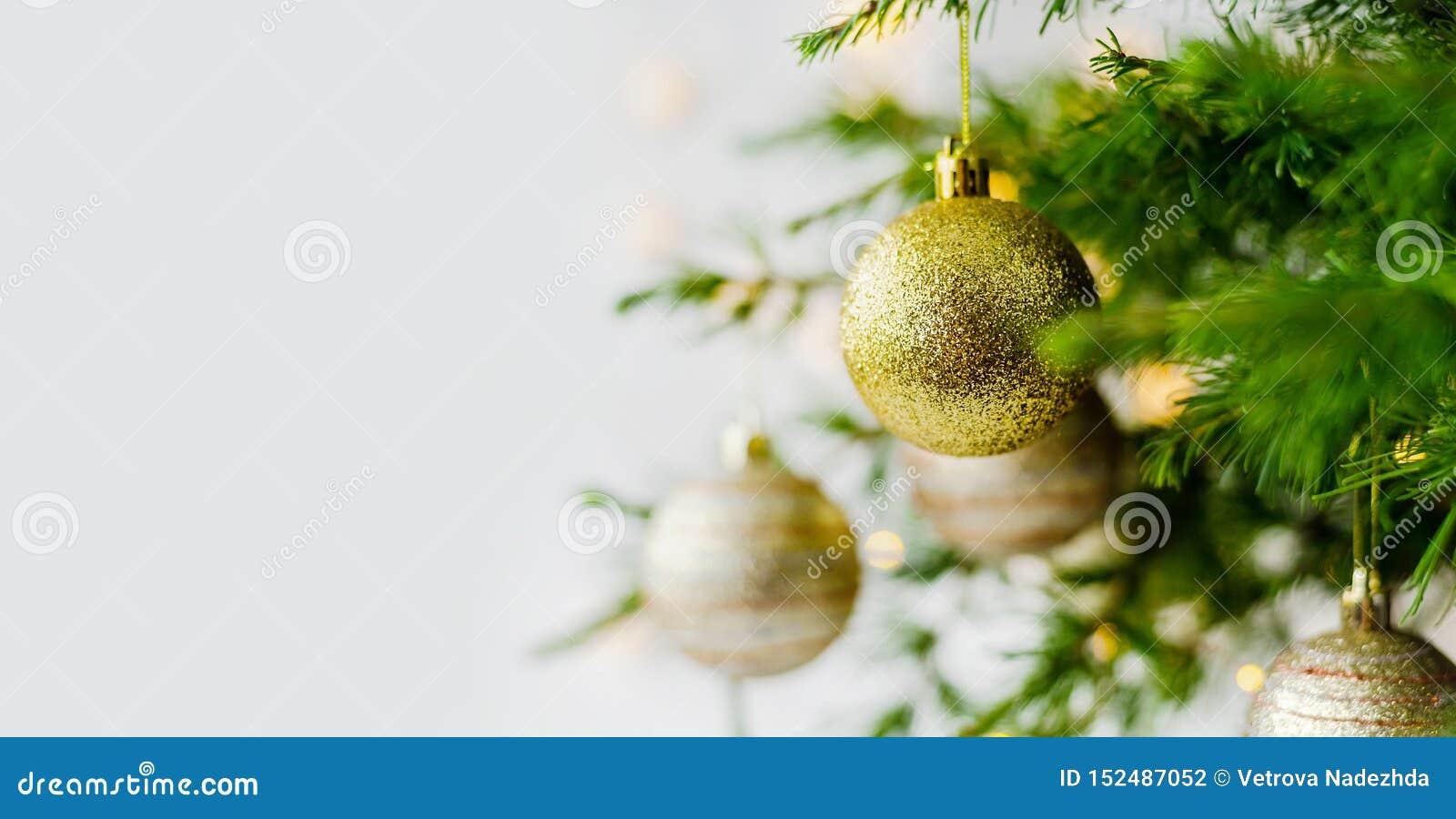 圣诞节构成装饰和诗歌选杉树分支