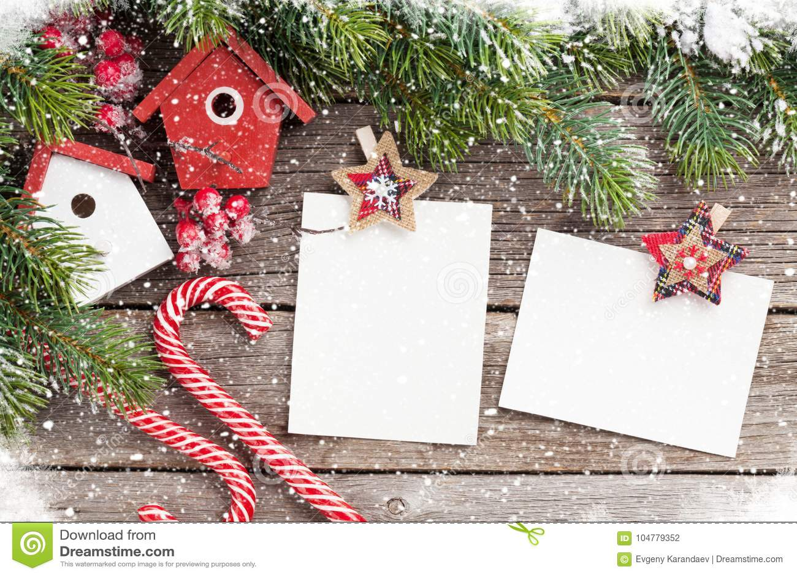 圣诞节空白的照片框架,鸟舍装饰