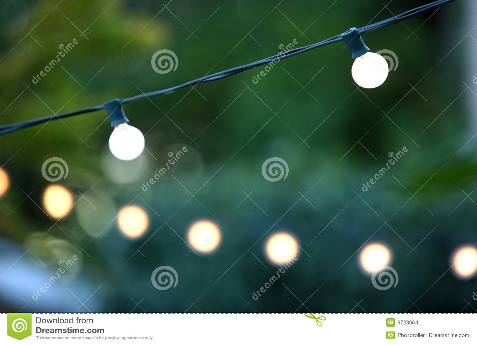 圣诞节装饰停止的光