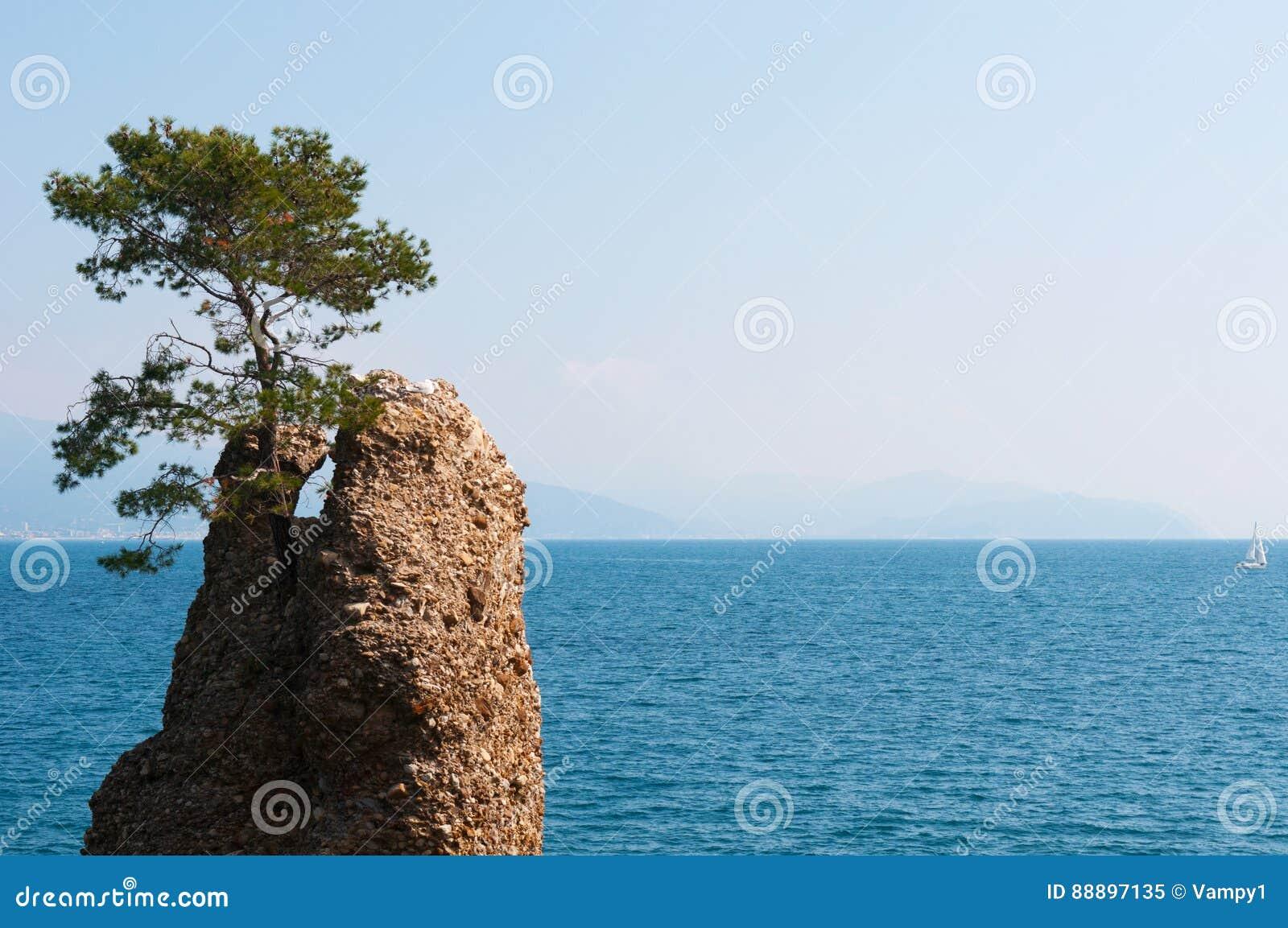 圣马尔盖里塔利古雷,热那亚,利古里亚,意大利,意大利语里维埃拉,欧洲