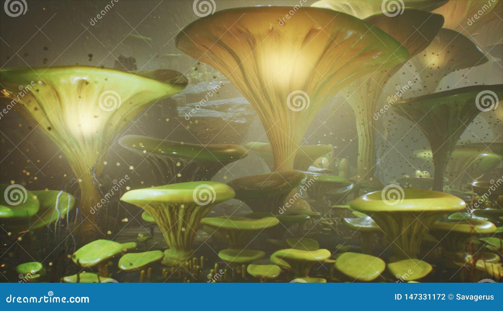 在一个不可思议的森林美丽的不可思议的蘑菇在失去的森林里和萤火虫的幻想蘑菇在背景与