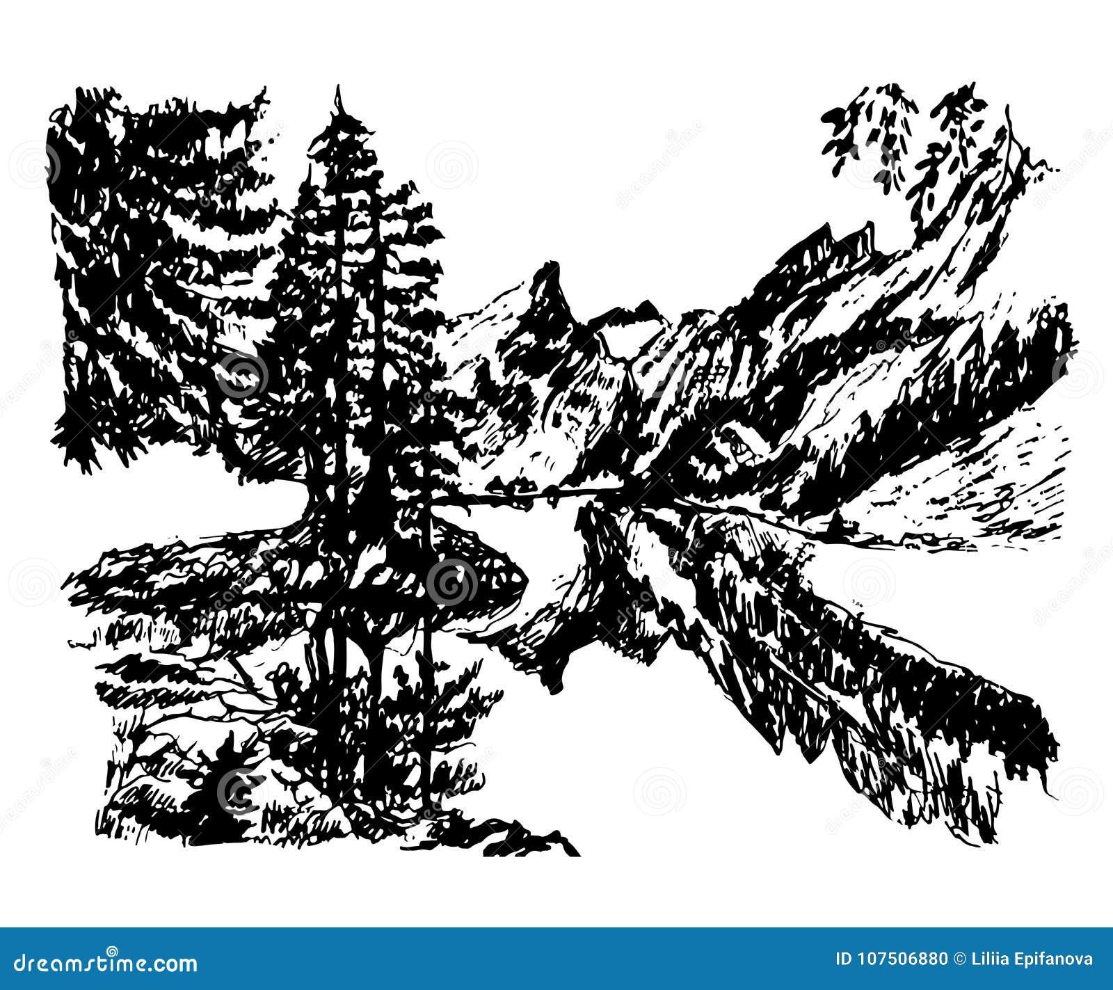 在一个具球果森林中间的图画背景风景美丽的山湖,手拉的传染媒介例证