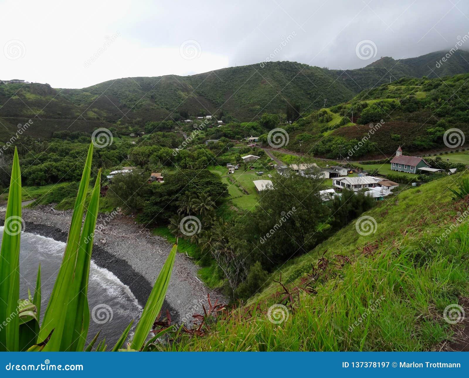 在一个典型的小夏威夷村庄的看法