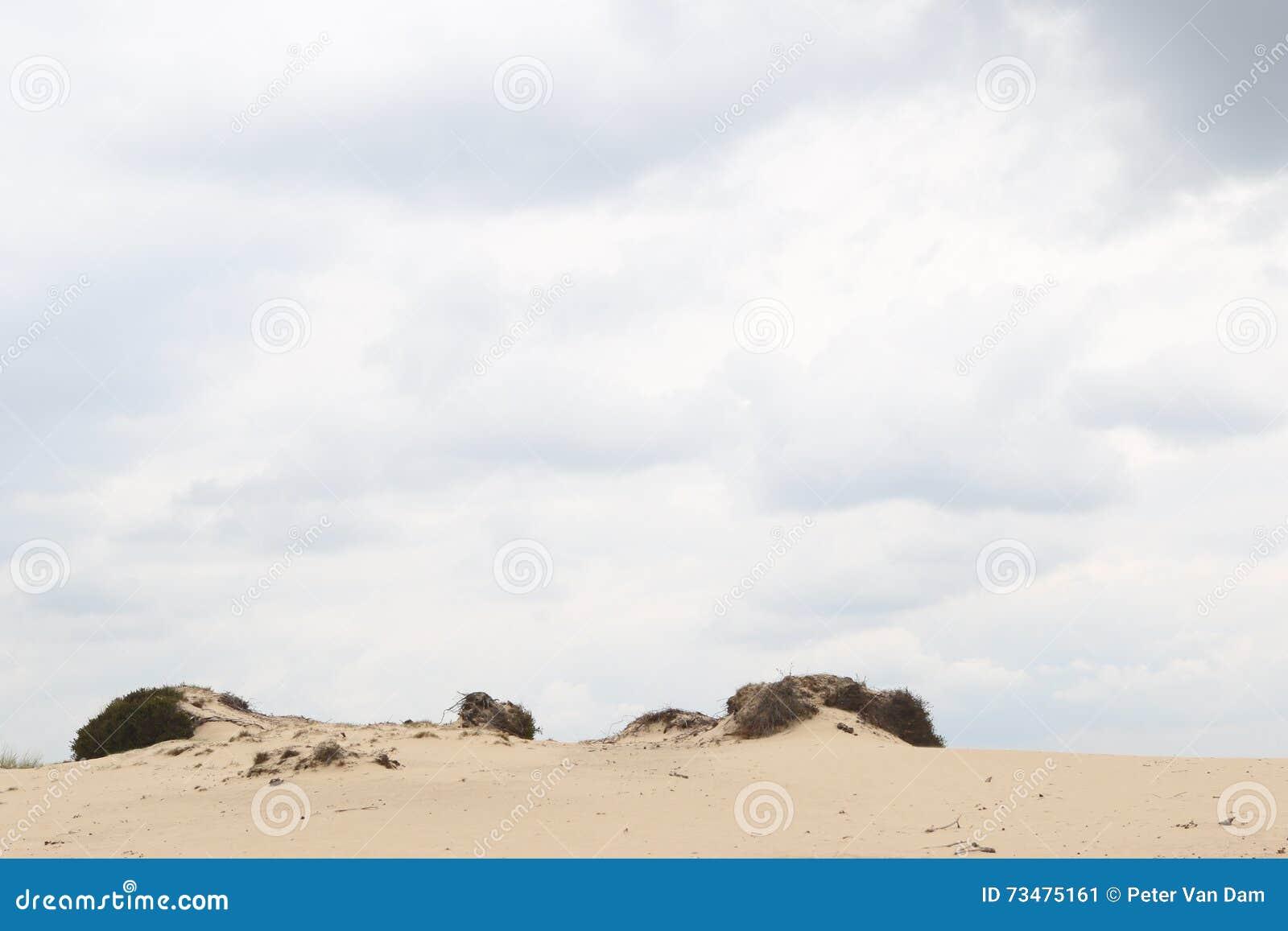 在一个含沙沙丘外缘的多云天空