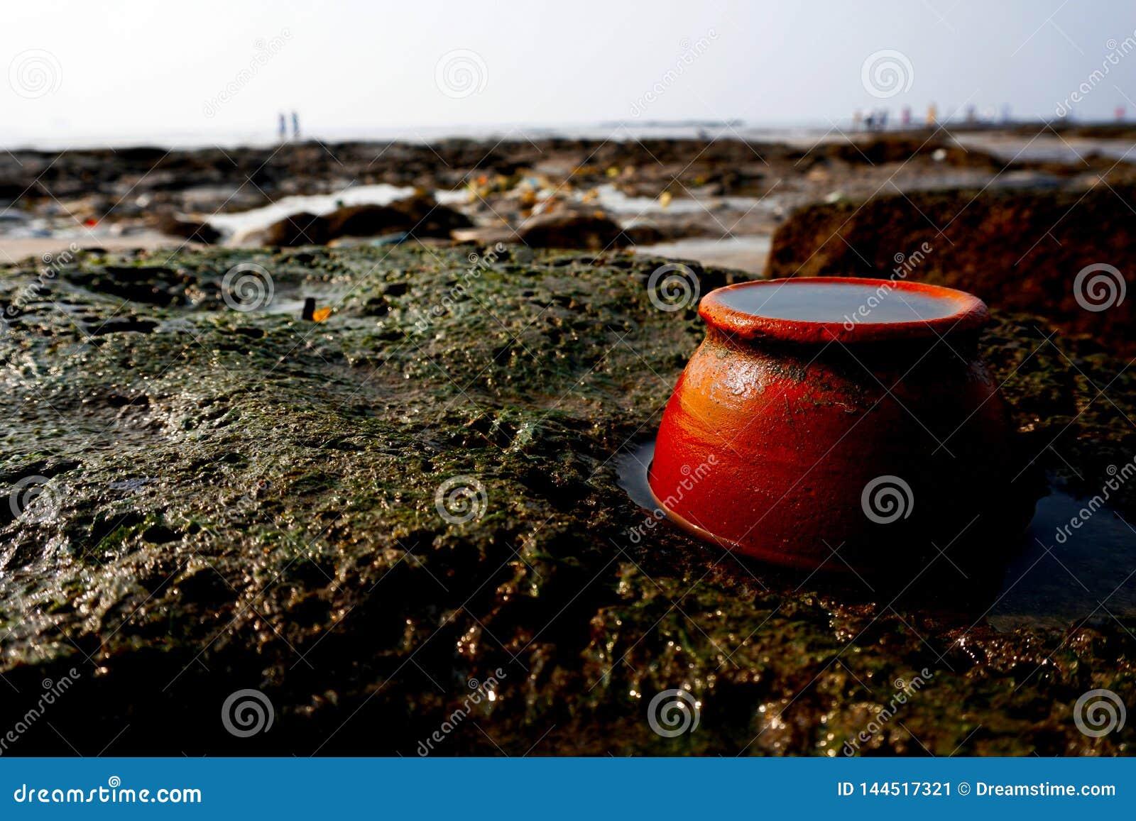 在一个多岩石的海滩的一个泥罐