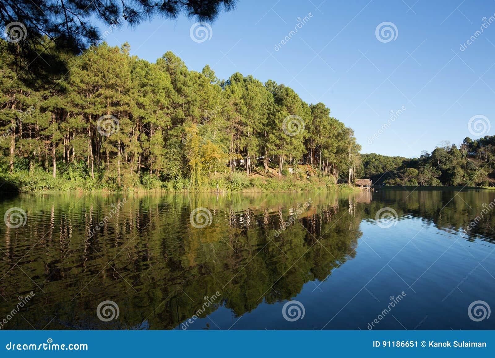 在一个湖的平静的风景,有充满活力的天空的