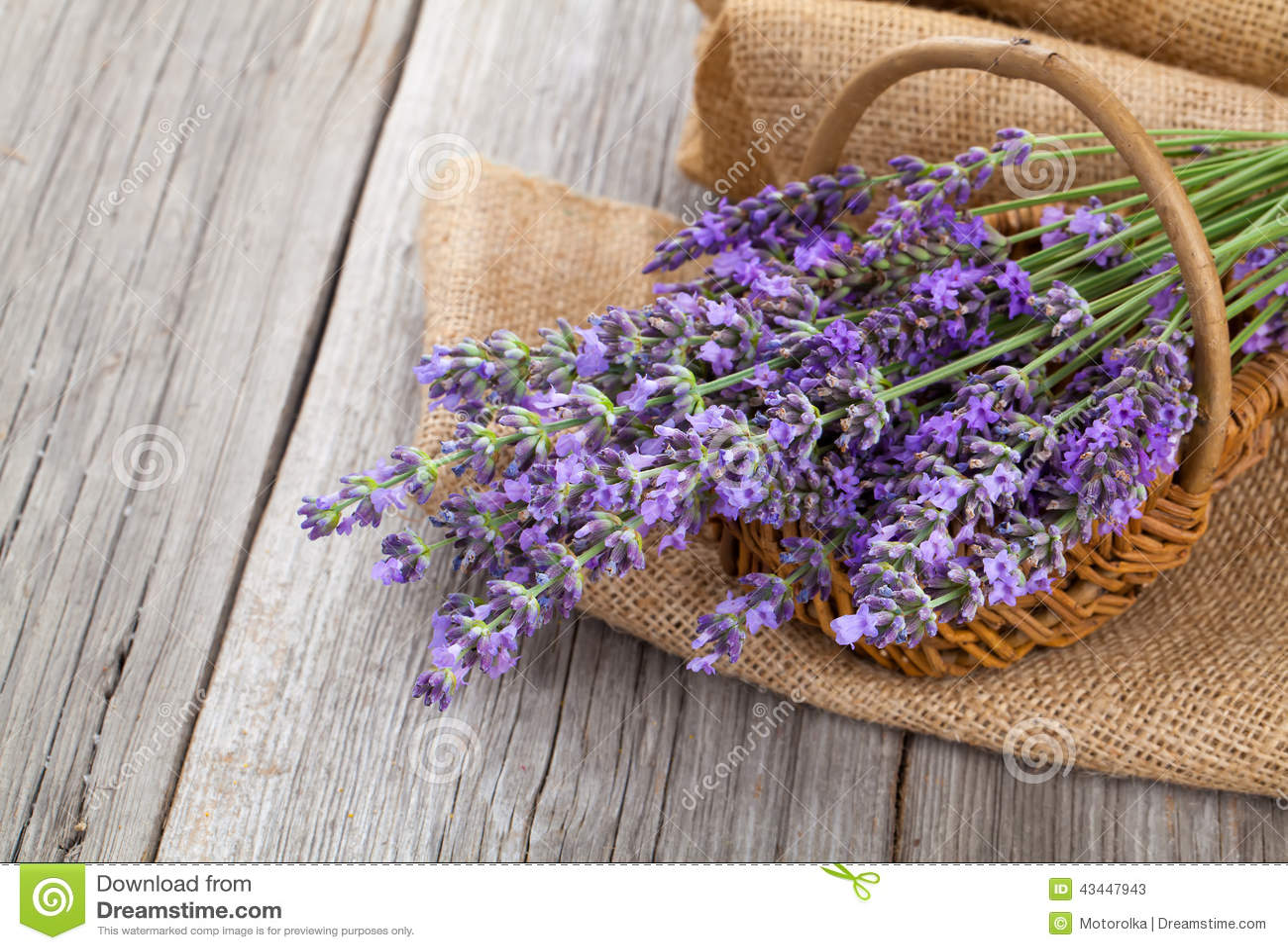 在一个篮子的淡紫色花与粗麻布