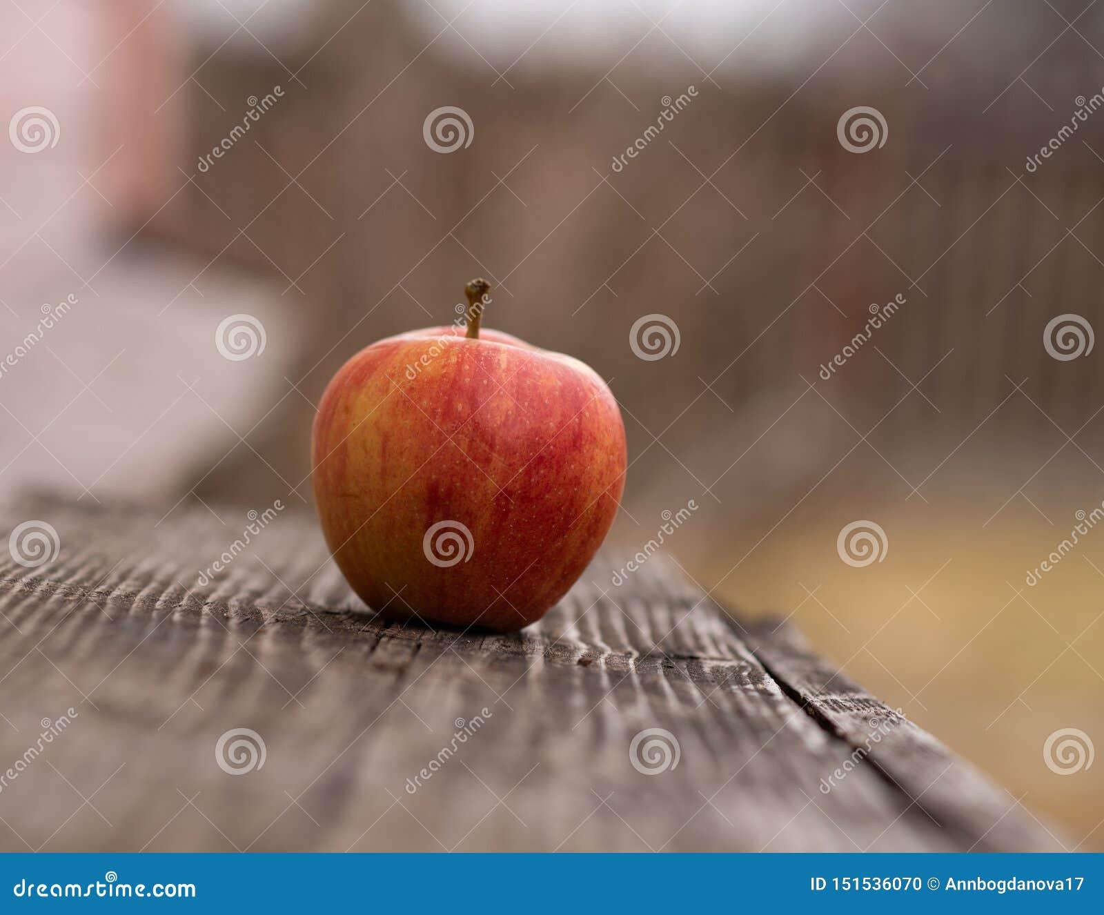 在一个长木凳的苹果计算机在户外秋天