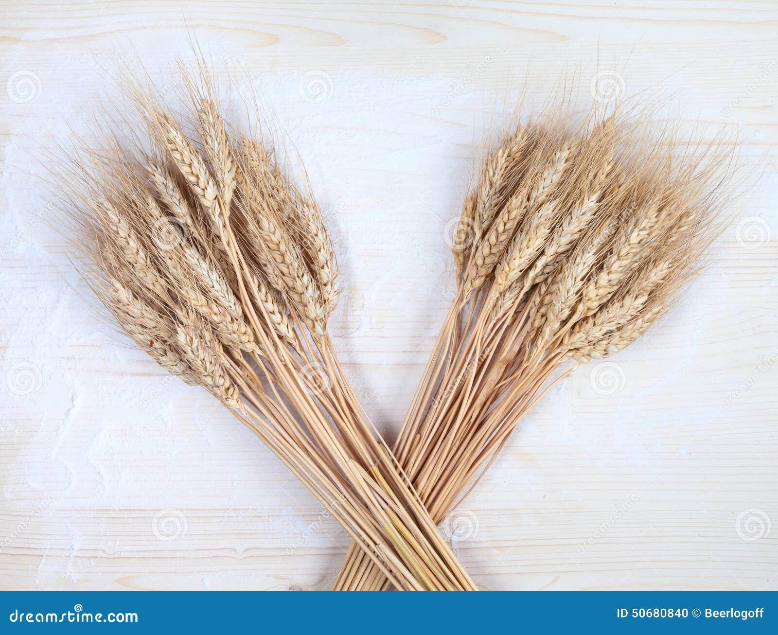 Download 在一张老planked木桌上的麦子 库存照片. 图片 包括有 自然, 膳食, 磨房, 烘烤, 黑暗, 生活 - 50680840