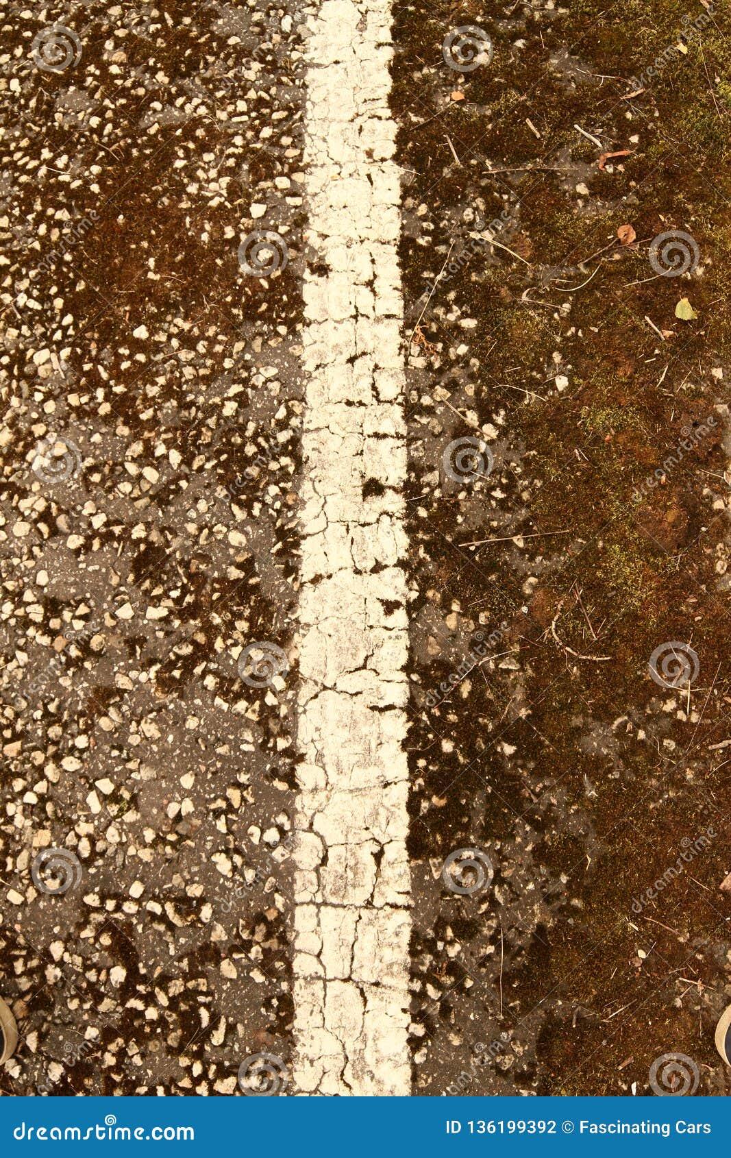 在一条破裂的柏油路的一条老空白线路