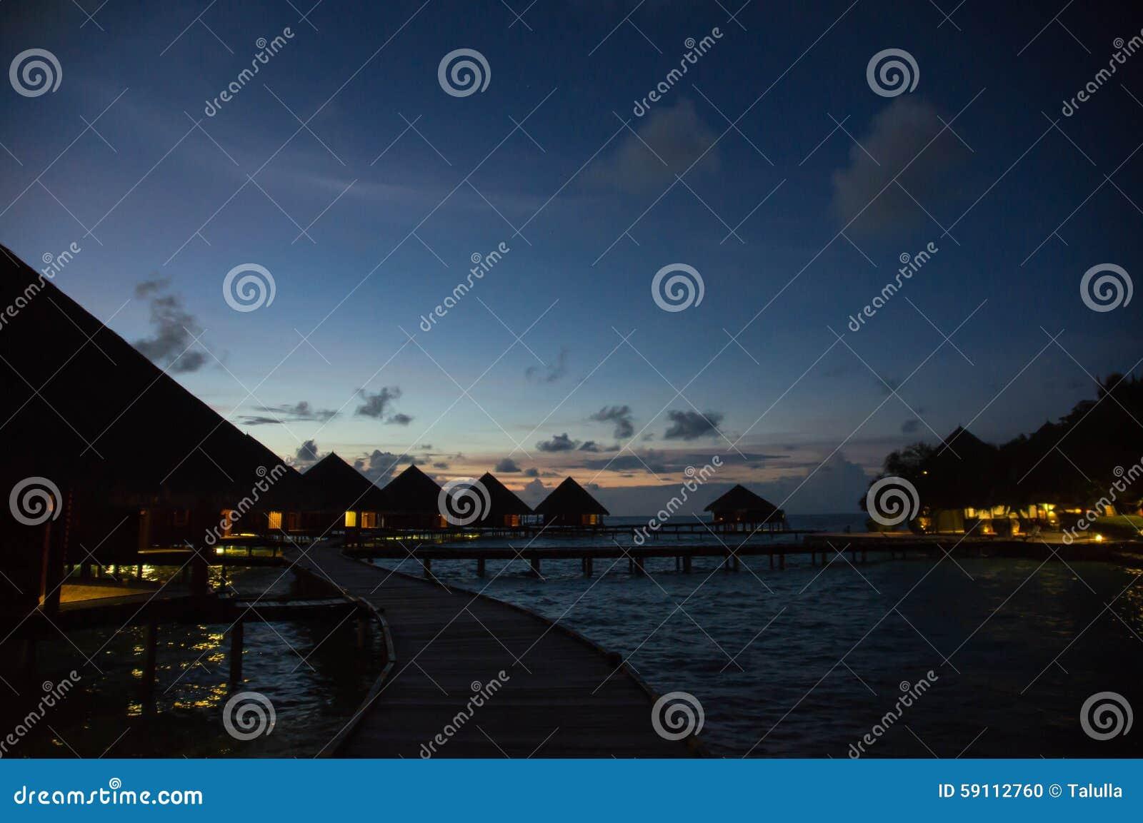 在一种热带手段的多云天空在晚上