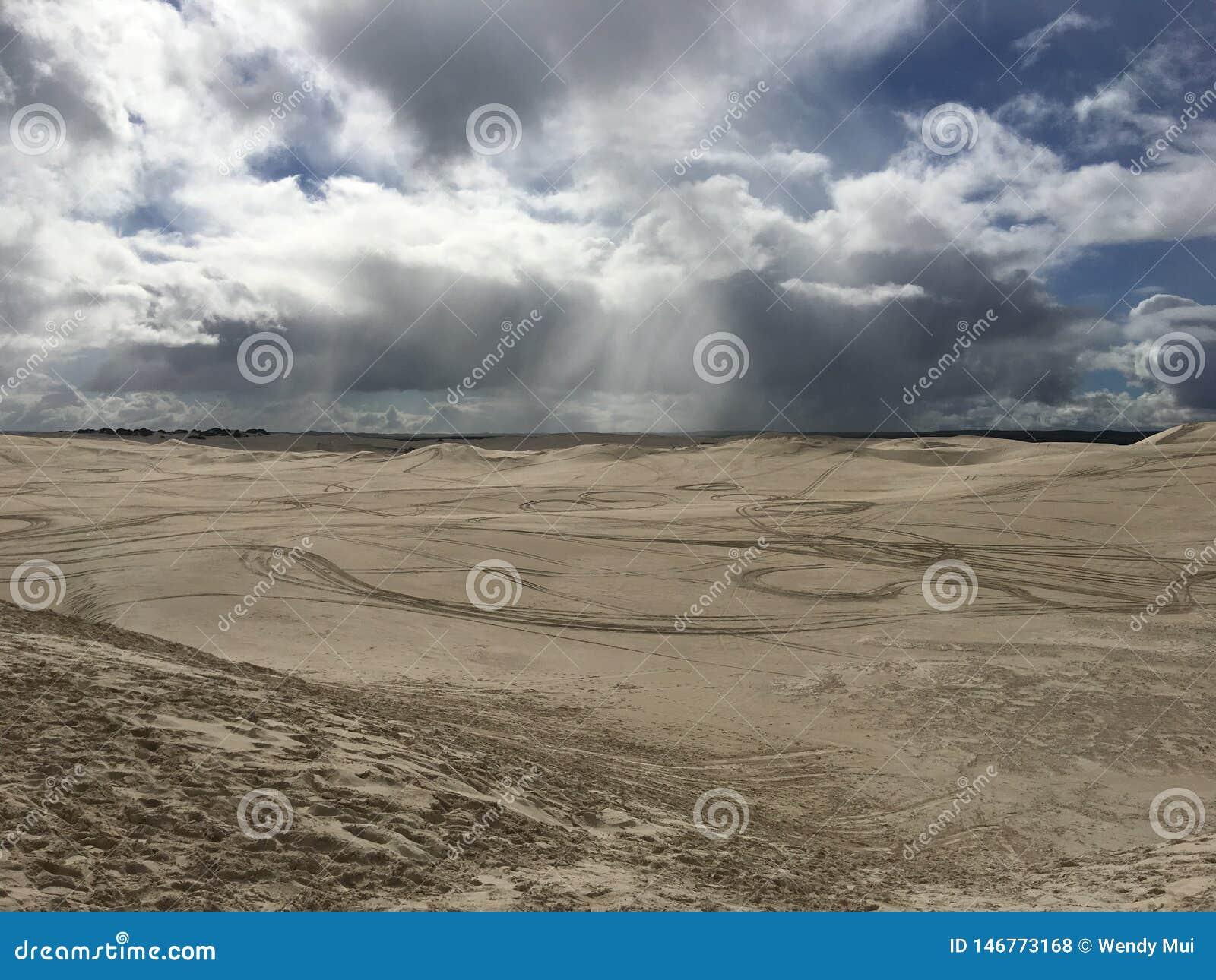在一阵阵雨的湿沙漠以后