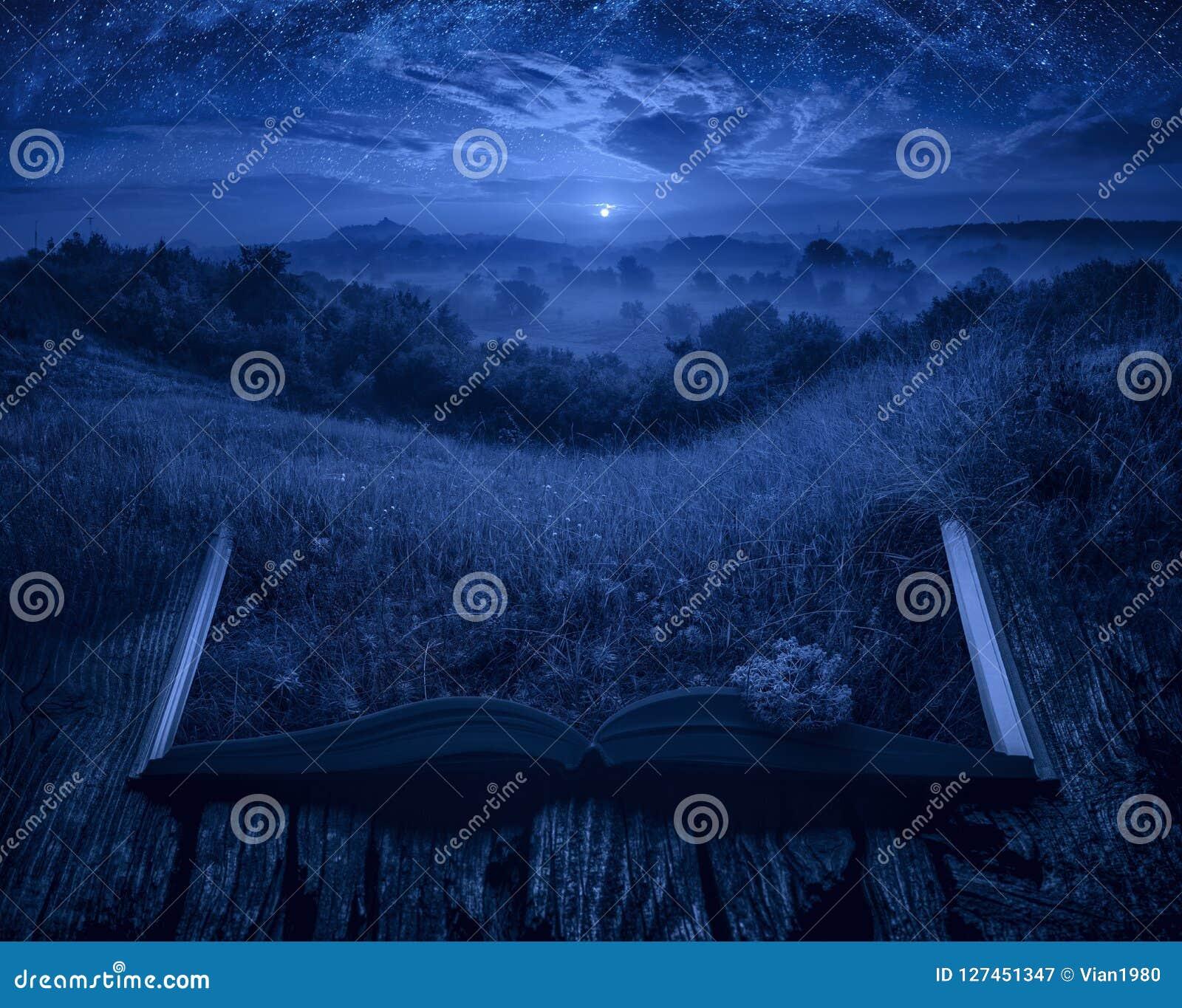 在上升的月亮光的夏天有薄雾的谷在bo的页的
