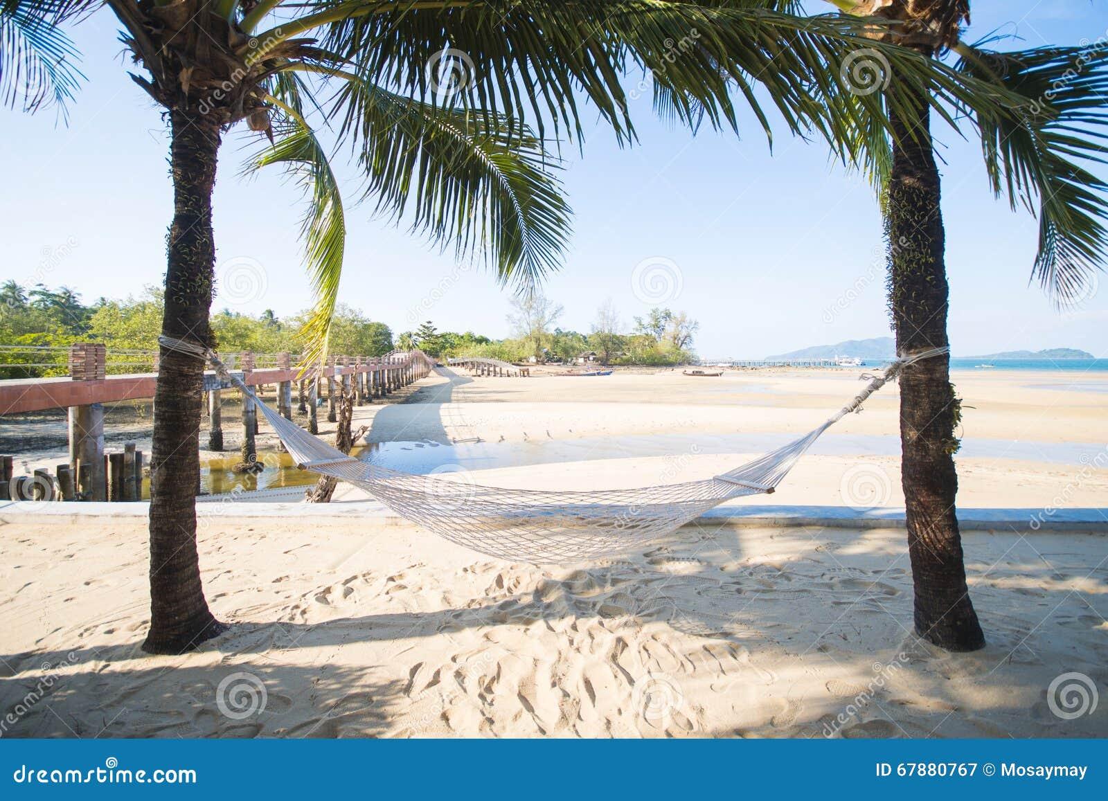 在两椰子之间的白色吊床