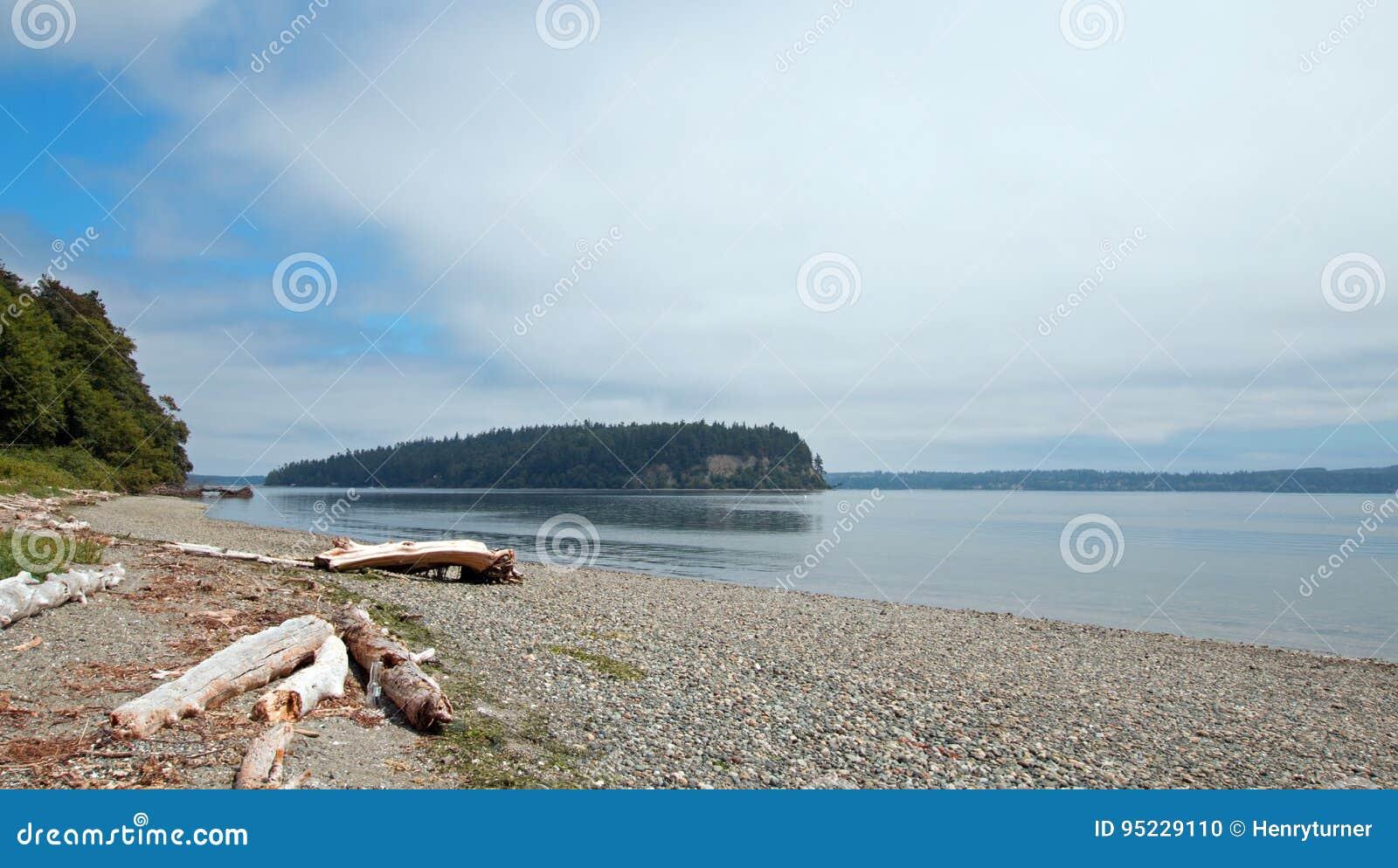 在亮光Tidelands Bywater海湾的国家公园岸的漂流木头在口岸Ludlow附近在皮吉特湾在华盛顿州