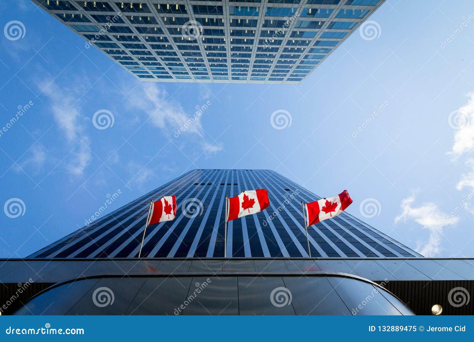在企业大厦前面的三面加拿大旗子在渥太华,安大略,加拿大 渥太华是加拿大的首都,