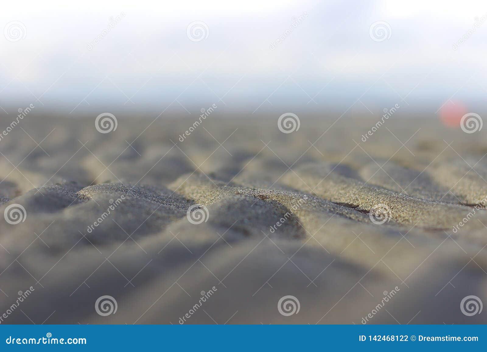 在低潮期间的水波纹在海滩