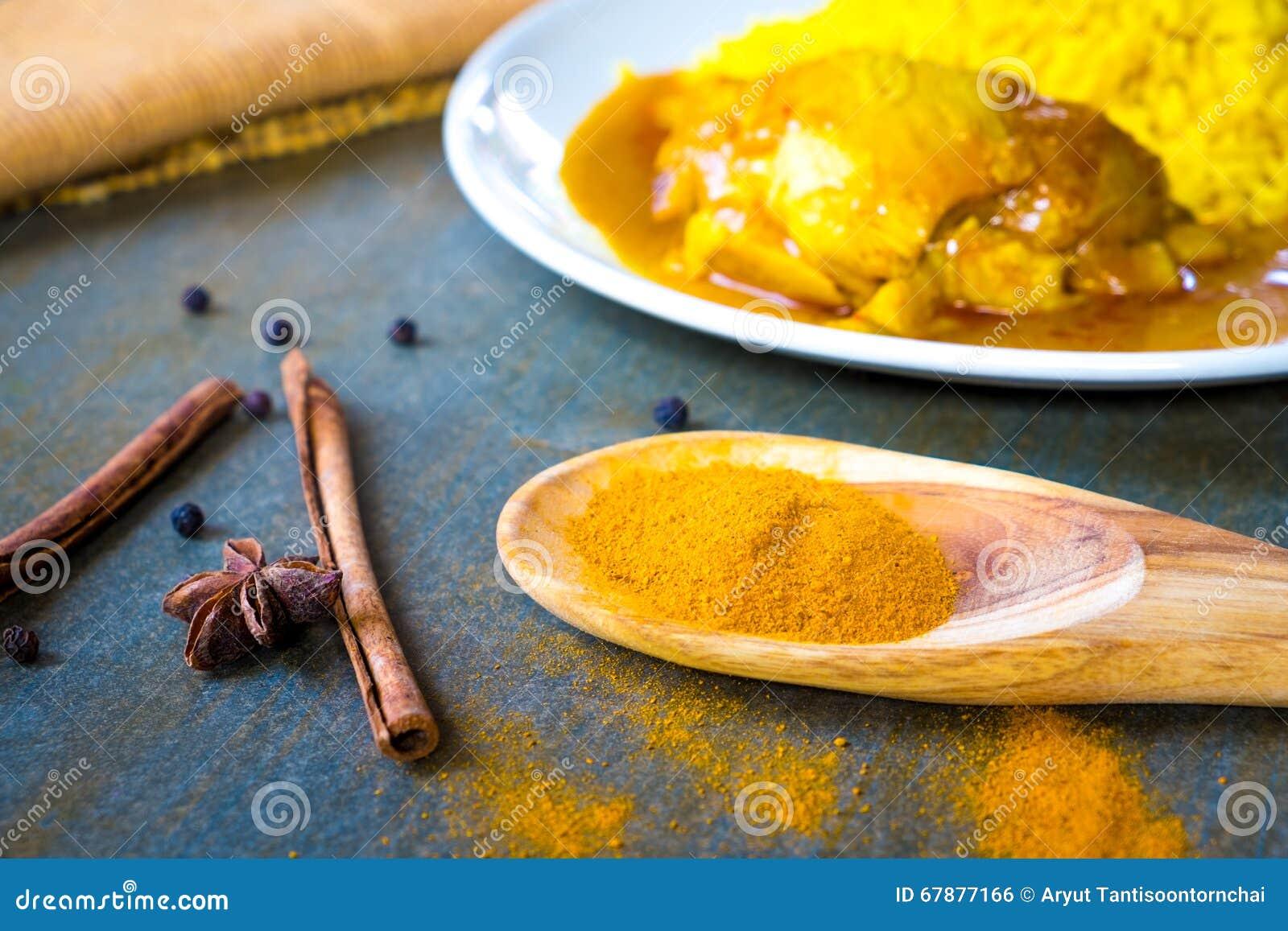 在做鸡的杓子的香料Biryani